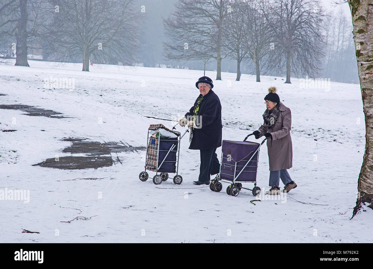 Two intrepid old ladies with shopping trolleys brave the unseasonal snow in Beacon Park Lichfield Staffordshire - Stock Image