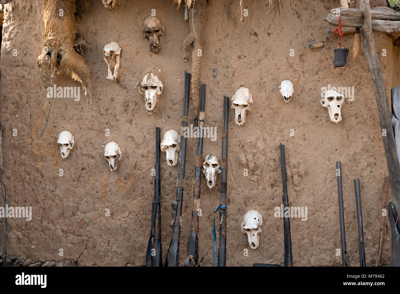 The outside wall of a Dogon hunter's house decorated with skulls. Mali, West Africa. - Stock Image