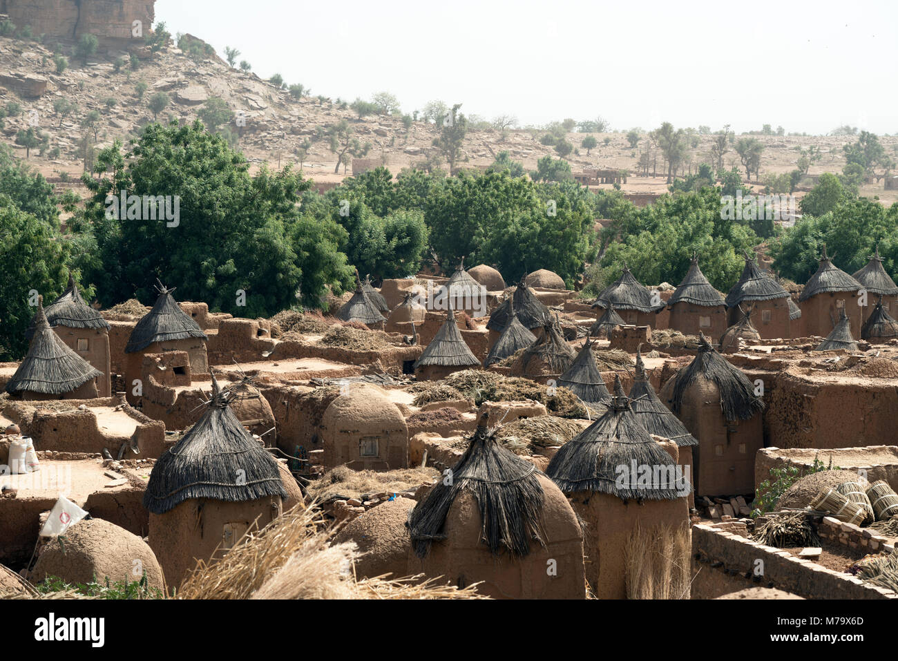 Granaries are used to store millet in Dogon villages. These are 'male' granaries - owned by men. Mali, West - Stock Image