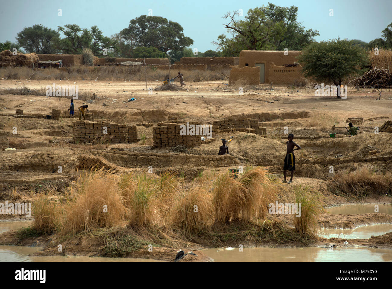 Young boys making mud bricks in a small, rural village. Mopti Region, Mali, West Africa. - Stock Image