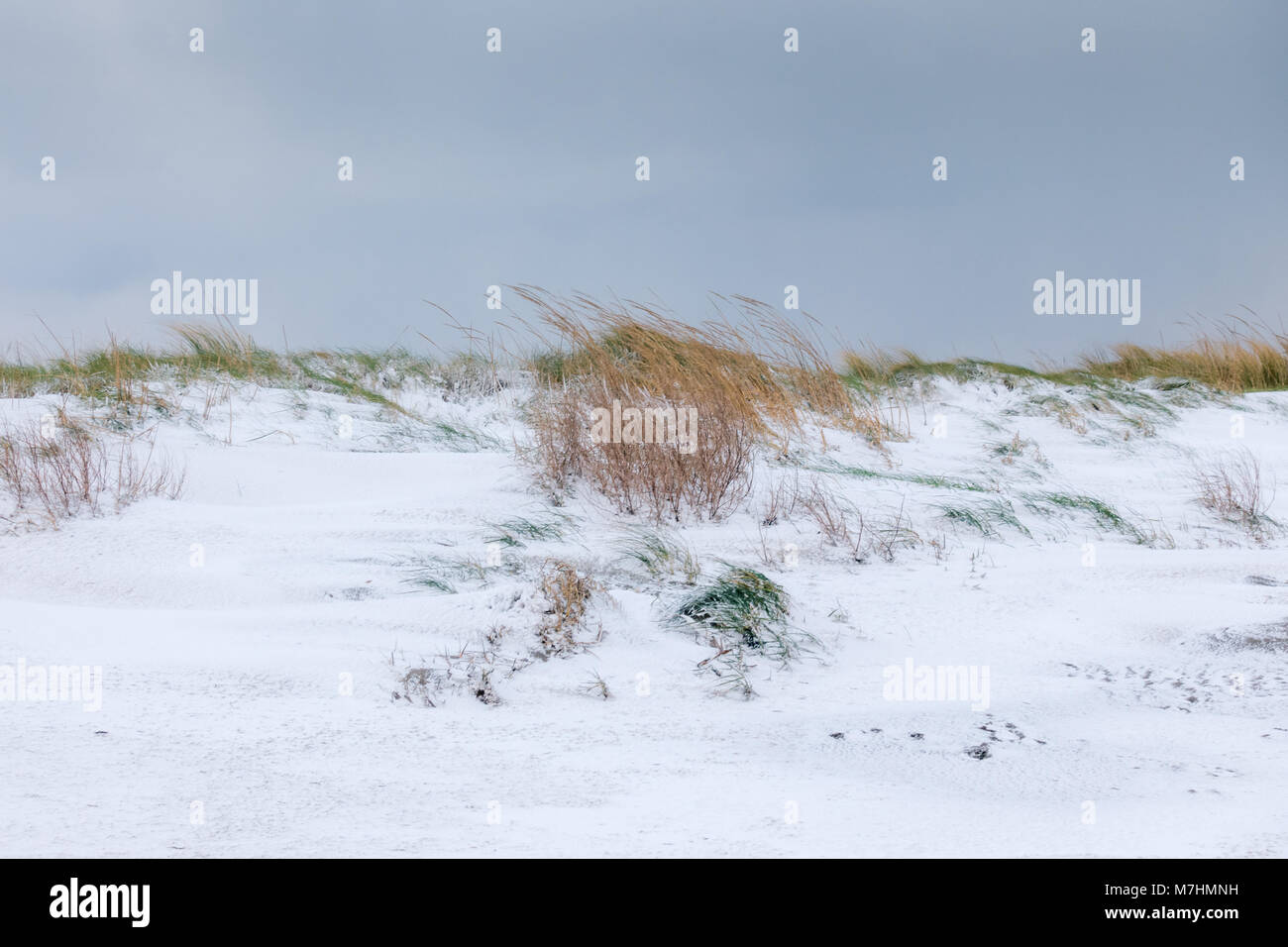 Winter on the beach in Ireland - Stock Image