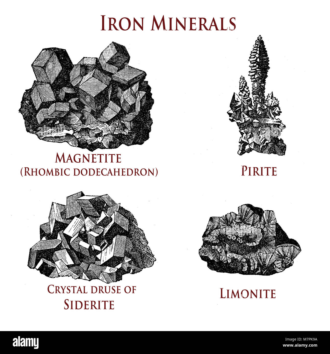 vintage illustration of iron minerals:magnetite, pirite, siderite, limonite - Stock Image