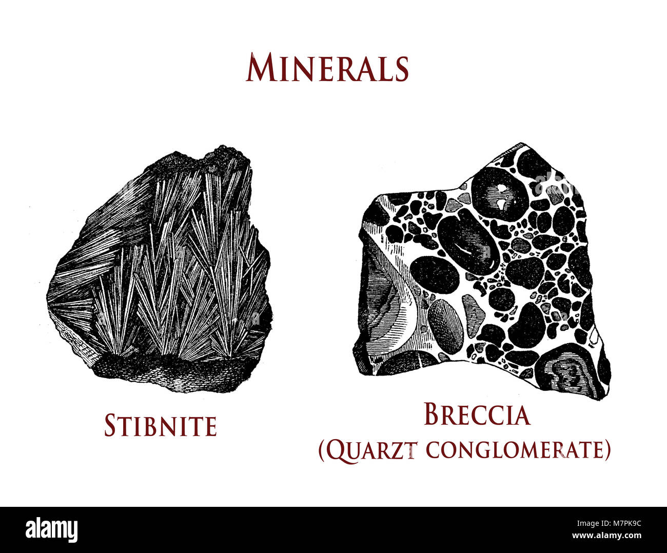 vintage illustration of minerals: stibnite and breccia - Stock Image