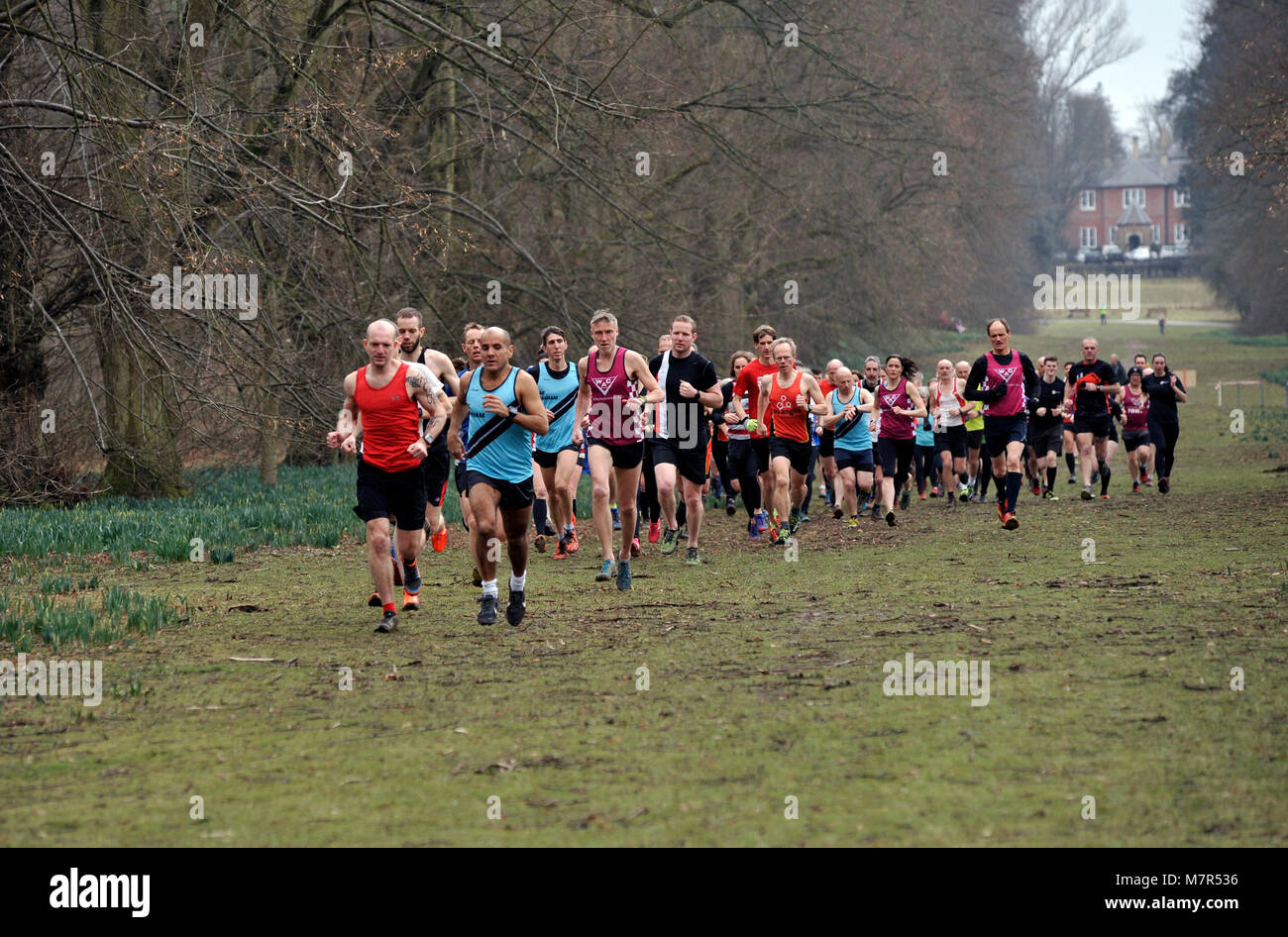 group of runners at Nowton Park bury St Edmunds Suffolk - Stock Image