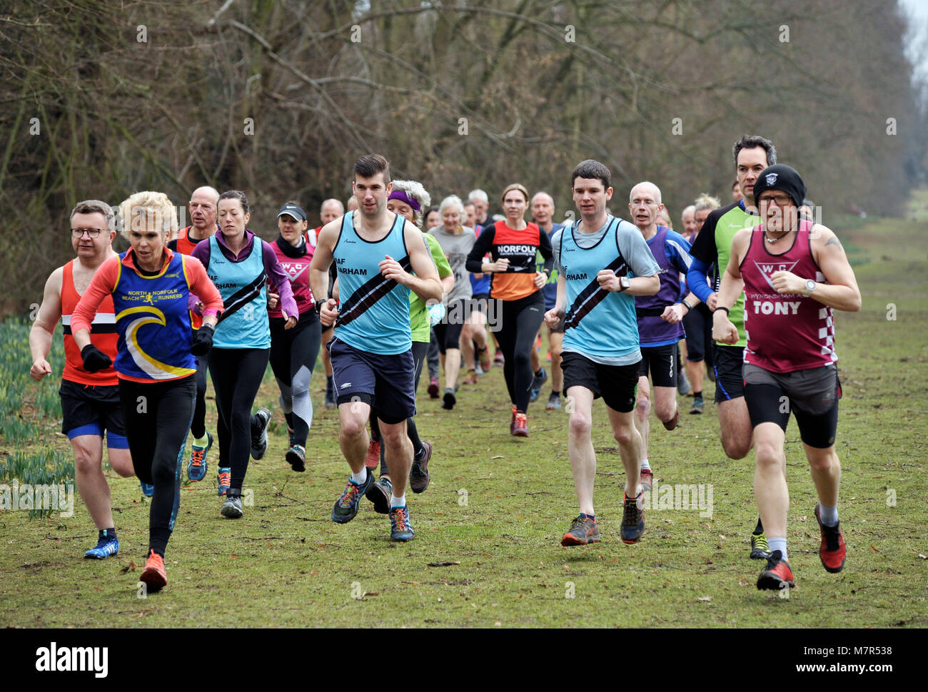 group of cross country runners nowton park bury st edmunds suffolk - Stock Image