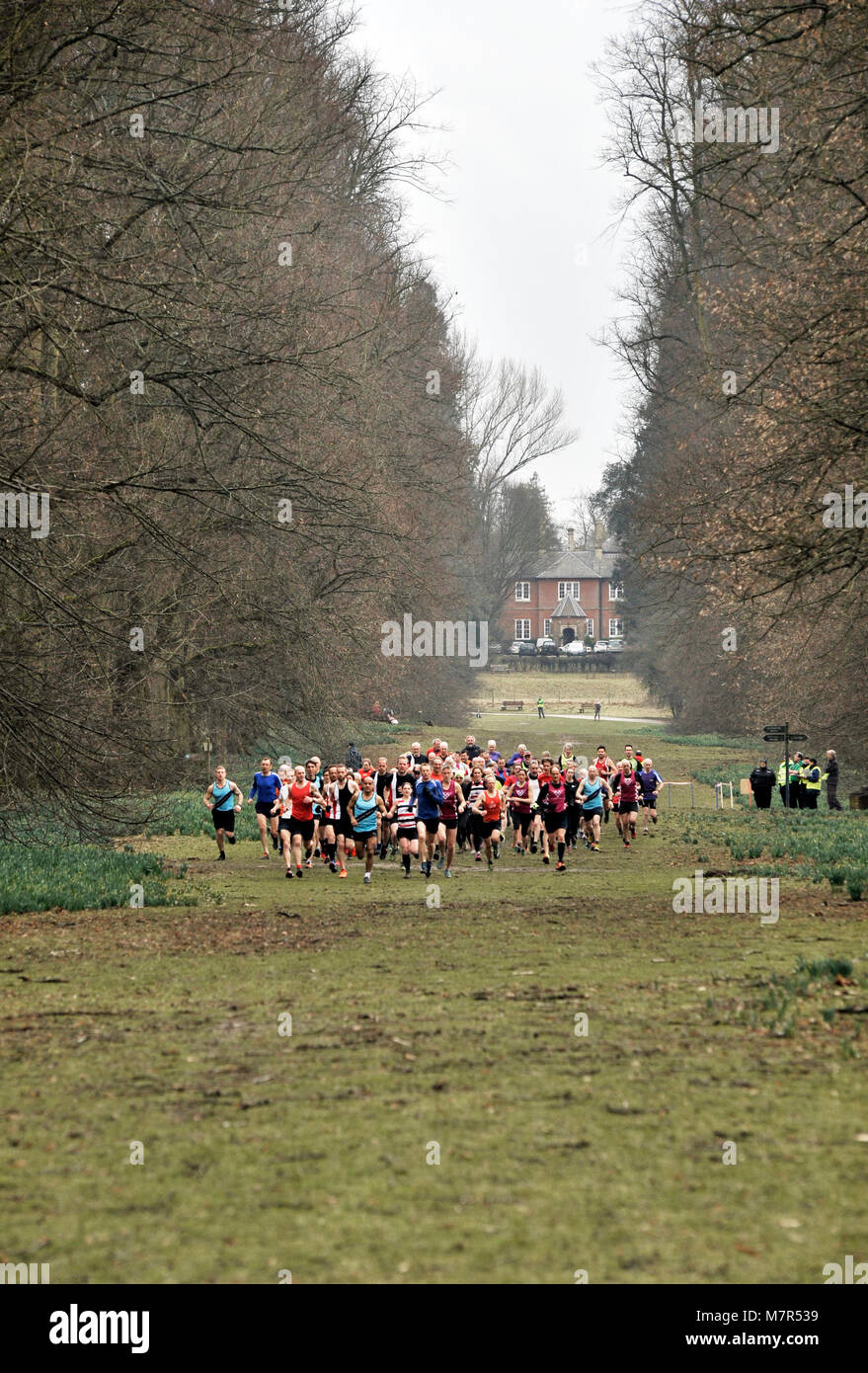 start of cross country race nowton park bury st edmunds suffolk uk - Stock Image