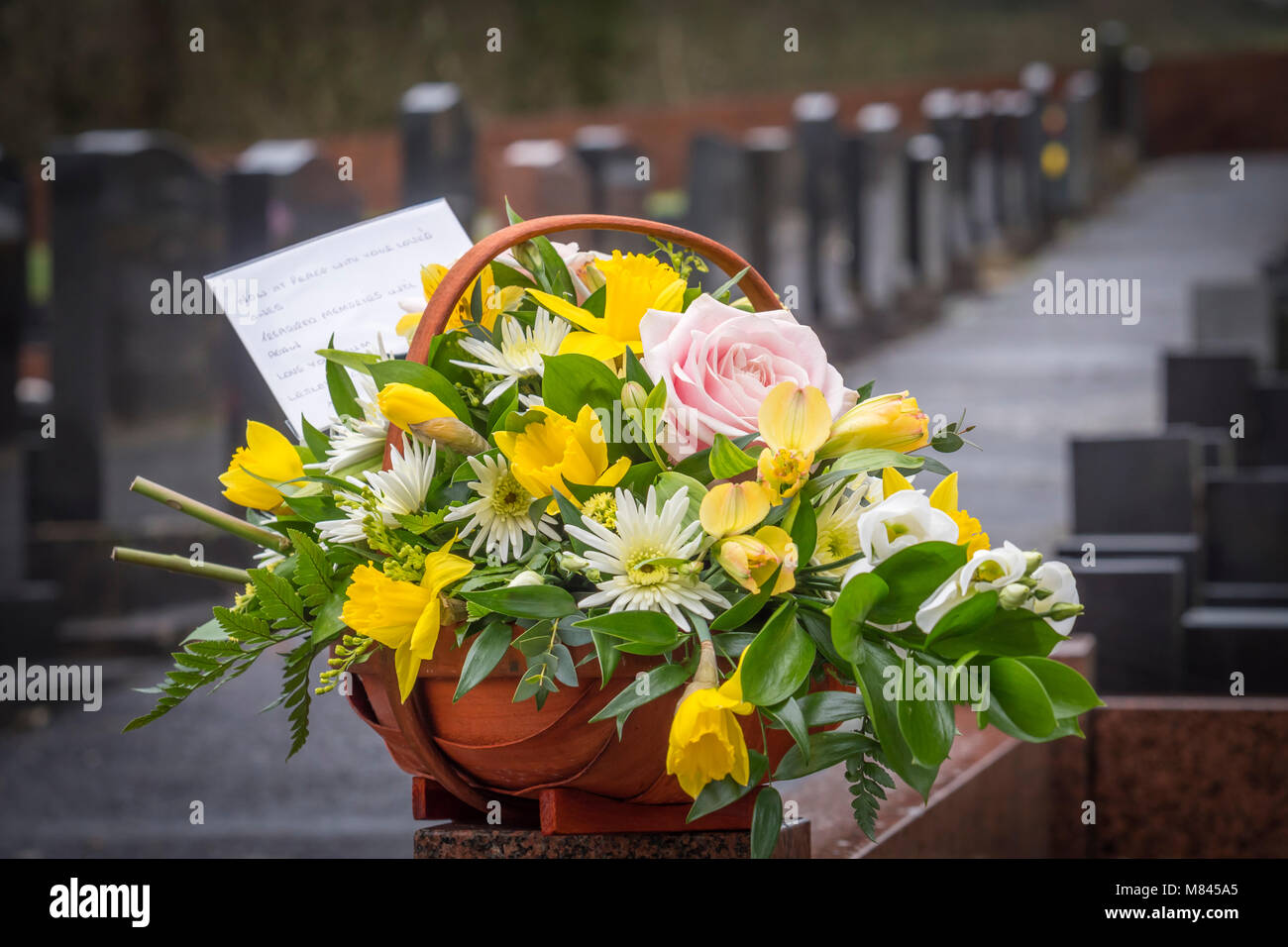 Daffodil funeral flowers images flower wallpaper hd dead daffodil flowers stock photos dead daffodil flowers stock funeral flowers at the graveside stock image izmirmasajfo Images