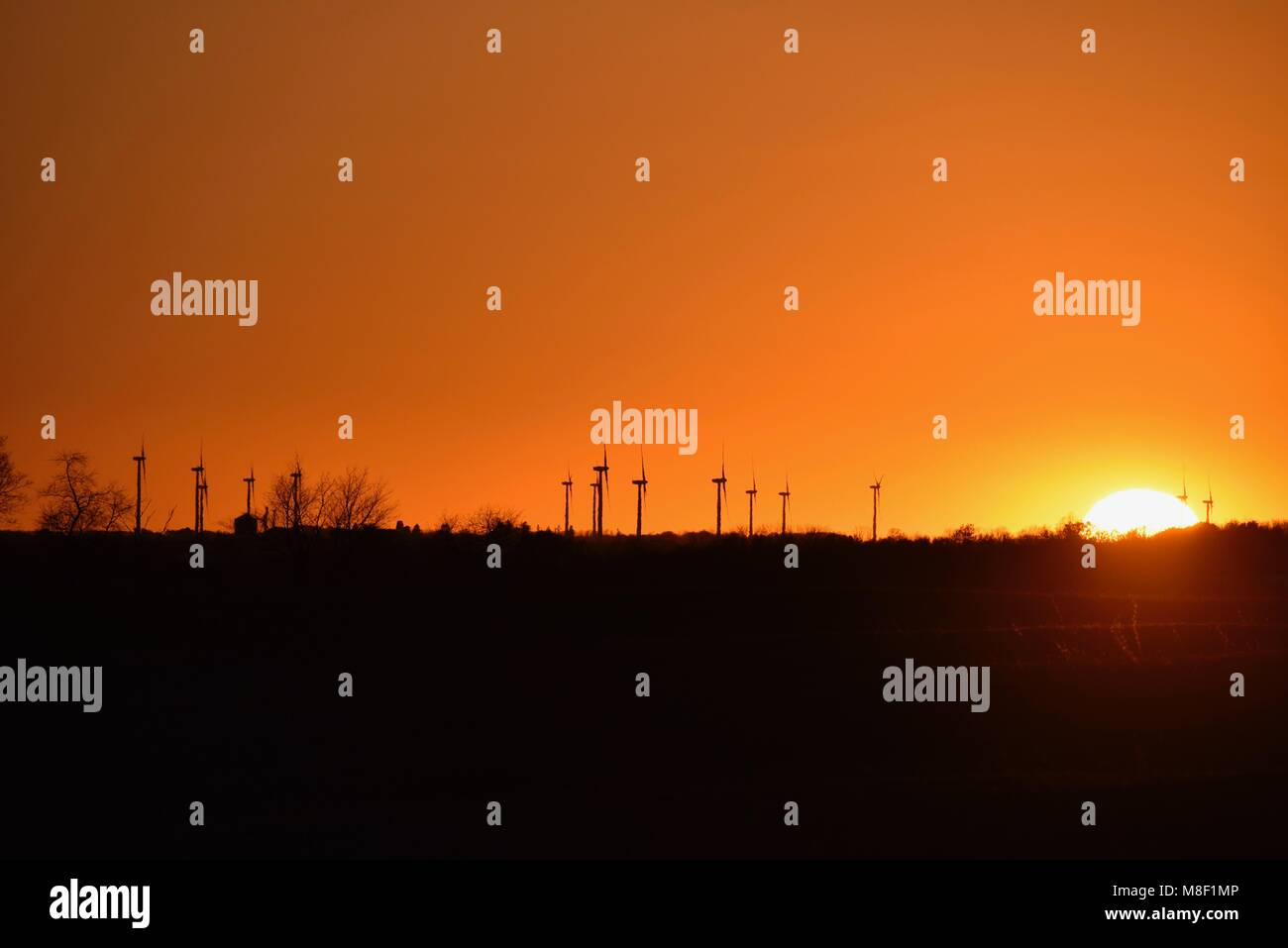 Large commercial wind turbines dramatically spinning at golden sunset in countryside on a wind farm, Lena, Illinois, - Stock Image