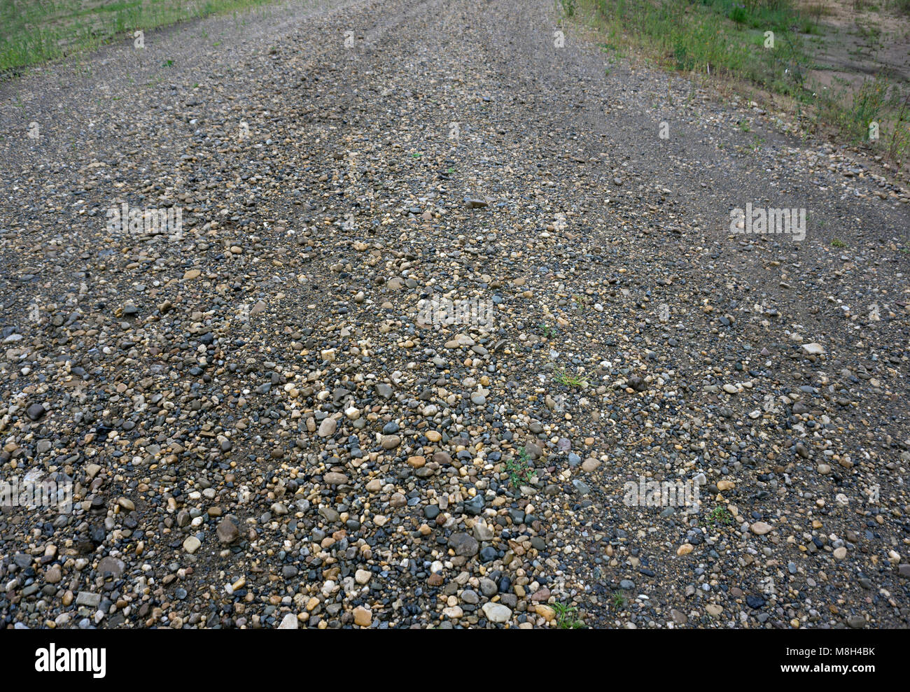 Pebble stone floor tile seamless background cement mixed gravel pebble stone floor tile seamless background cement mixed gravel pebble stone floor texture wet round pebble stone rock floor in dramatic lighting dailygadgetfo Image collections