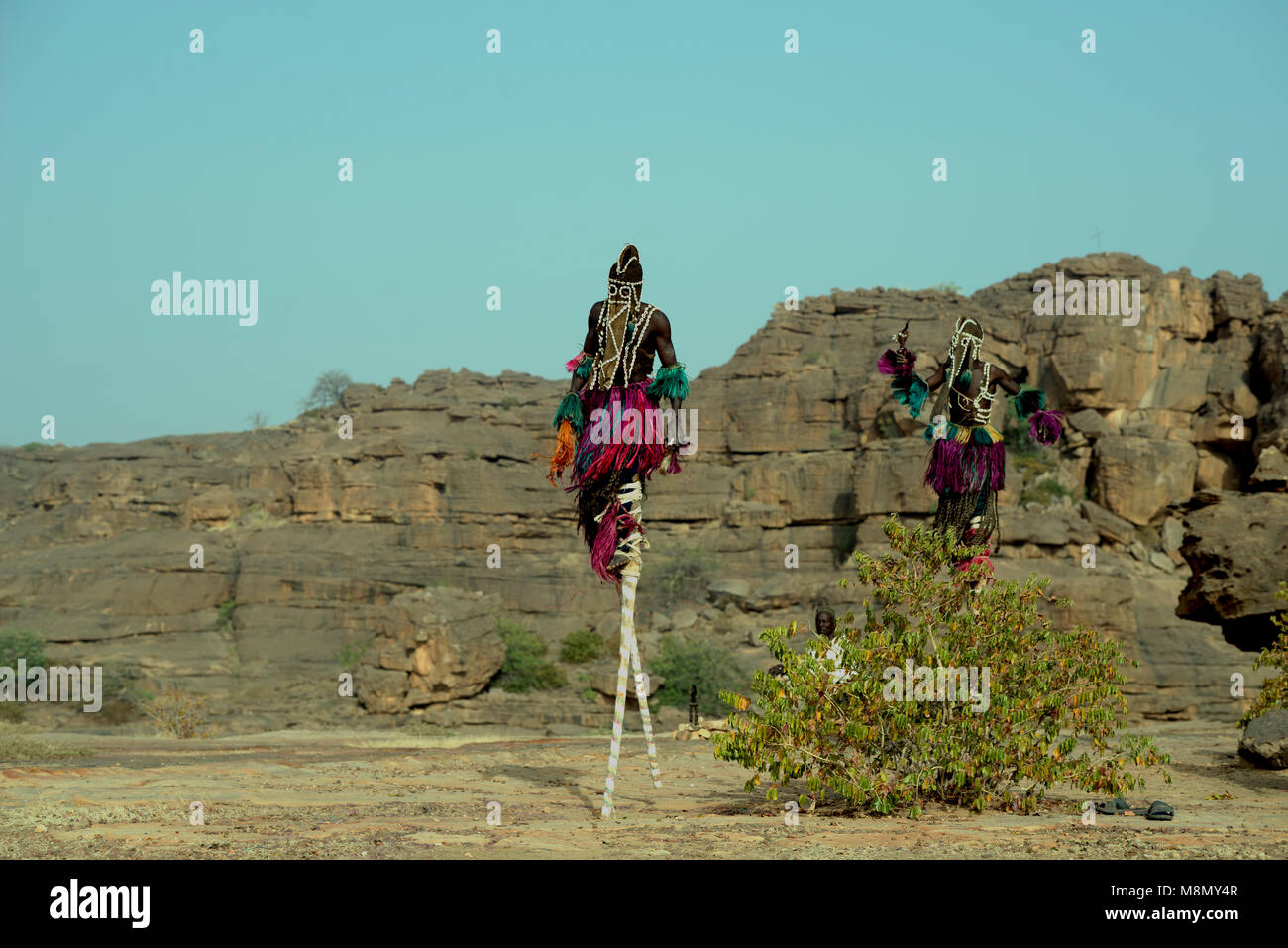 Walking on stilts is part of Dogon masked dancing. Dogon country, Mali, West Africa. - Stock Image