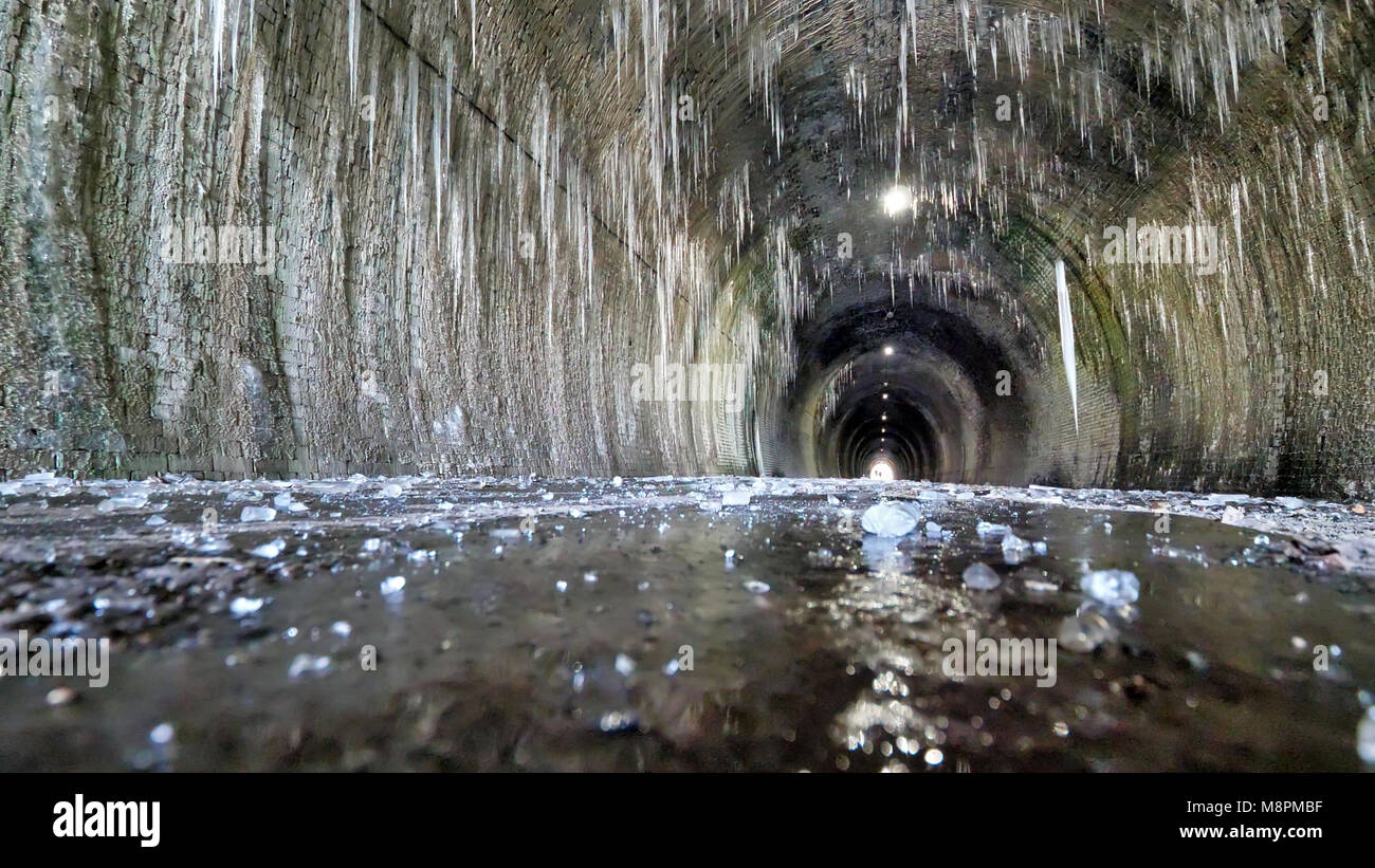 UK Weather: thawing icicles up to 6ft long pose a danger to walkers when they fall inside the frozen Ashbourne Tunnel - Stock Image