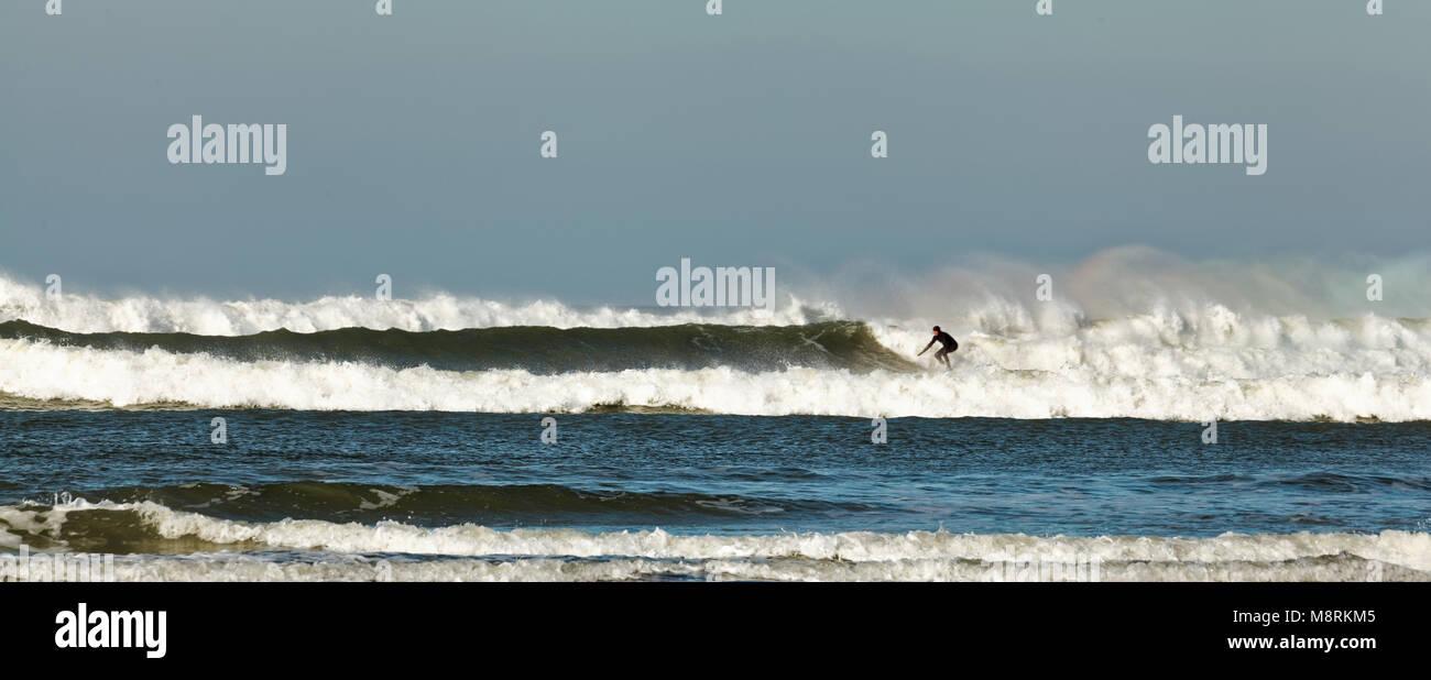 Panoramic shot of a lone surfer, racing into shore in the Atlantic Ocean (Celtic Sea), Bude, Cornwall, UK - Stock Image