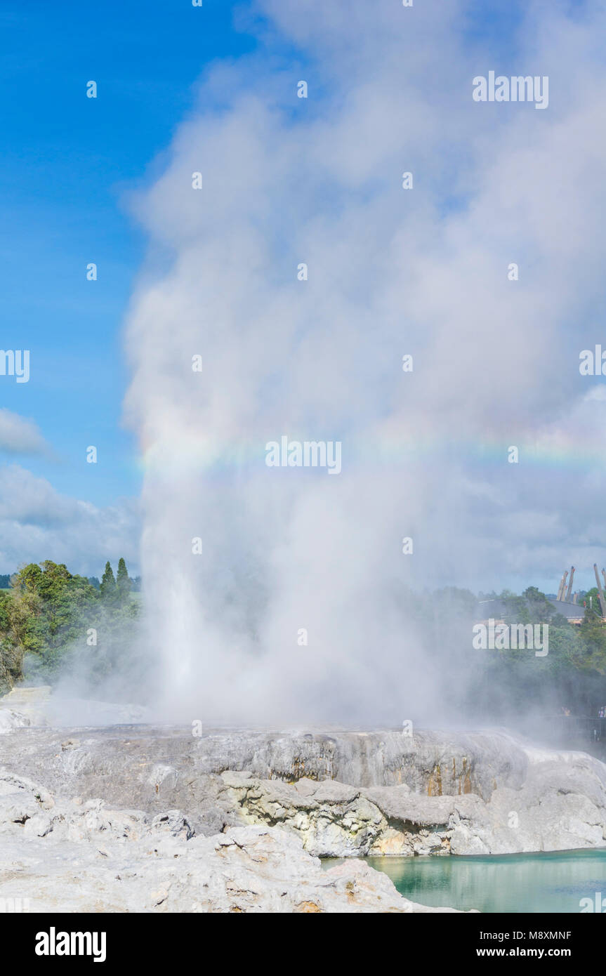 new zealand rotorua new zealand whakarewarewa rotorua Pohutu geyser and prince of wales geyser blue lake new zealand - Stock Image