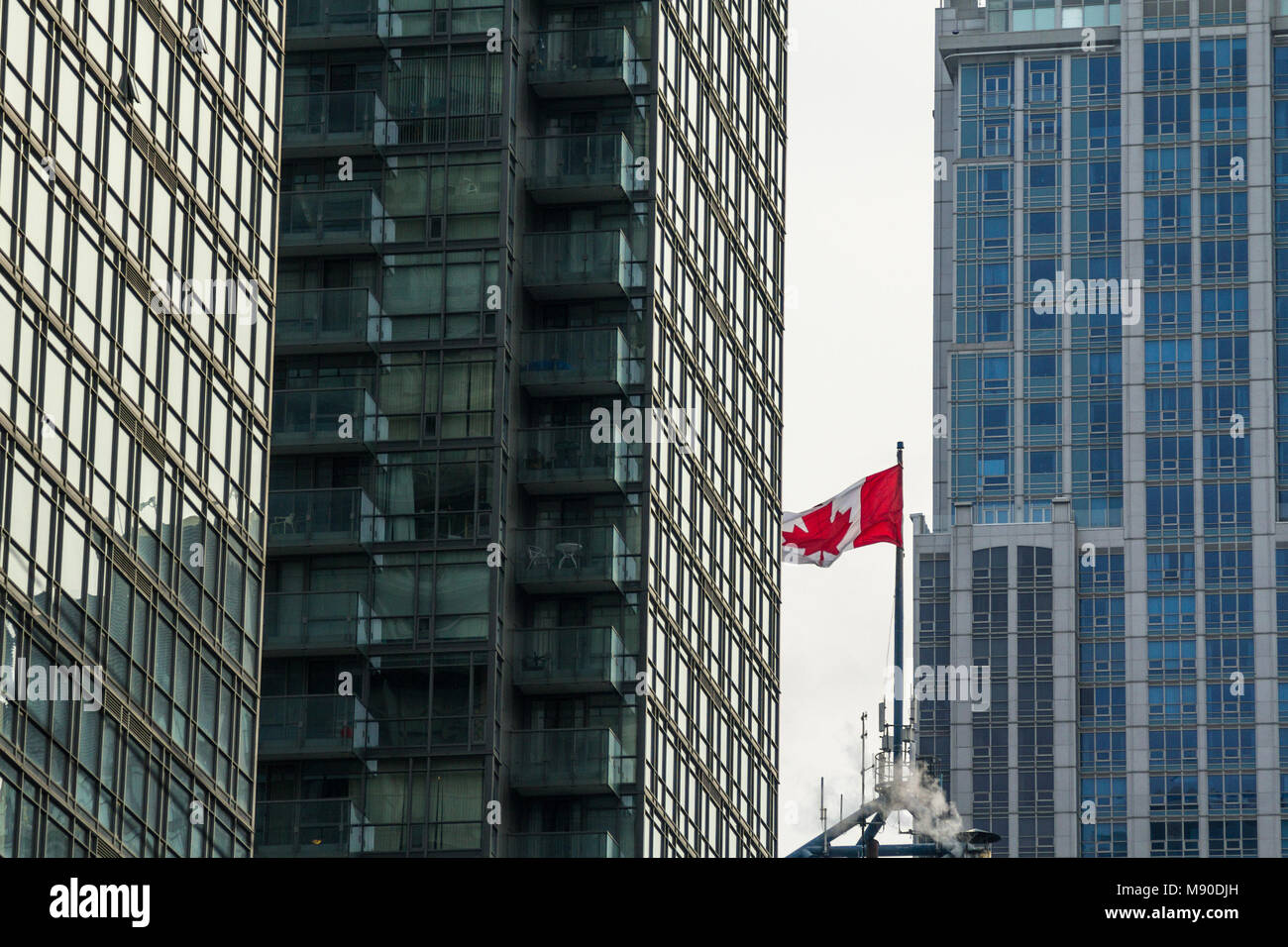 Flag of Canada waiving in the air surrounded by high rises and skyscrapers in the economic capital city of Canada, - Stock Image