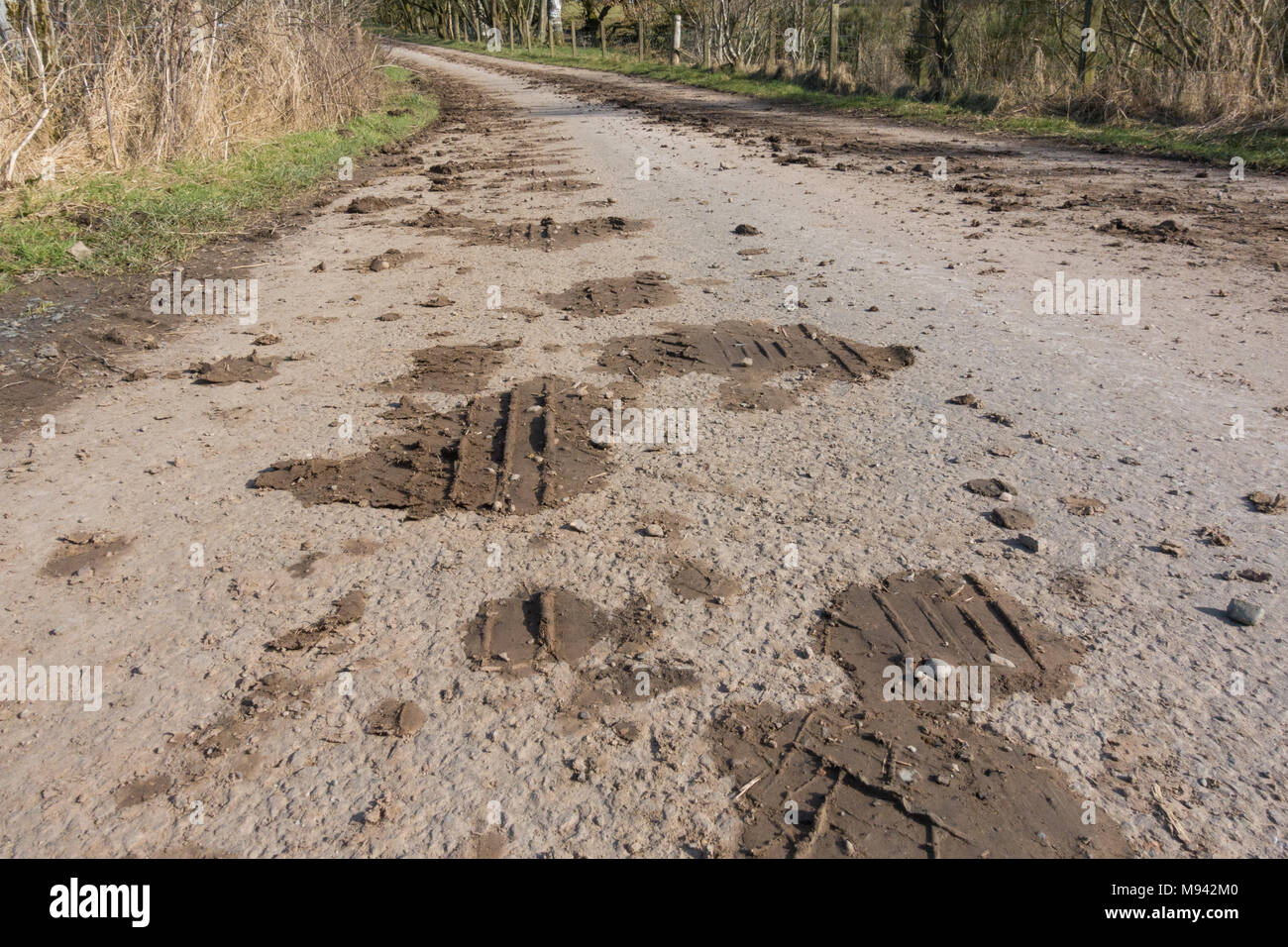 mud on rural country road - uk - Stock Image