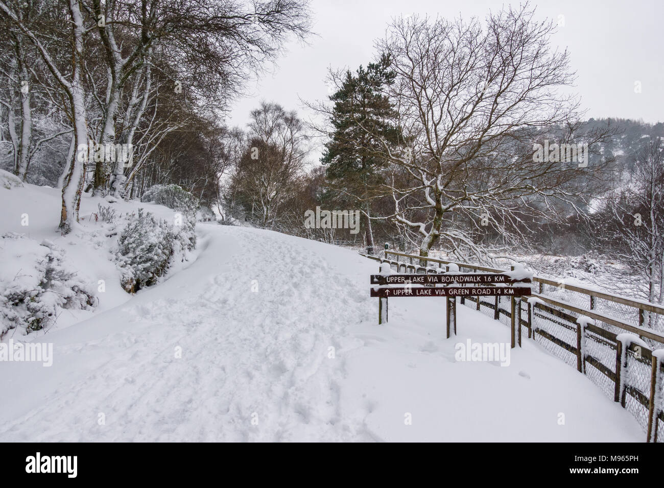 Winter in Glendalough - Ireland - Stock Image