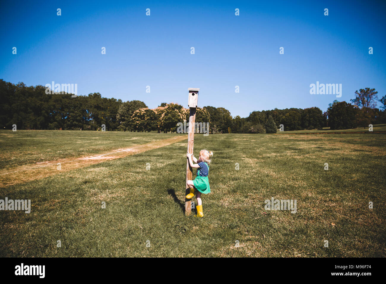 Girl trying to climb pole - Stock Image