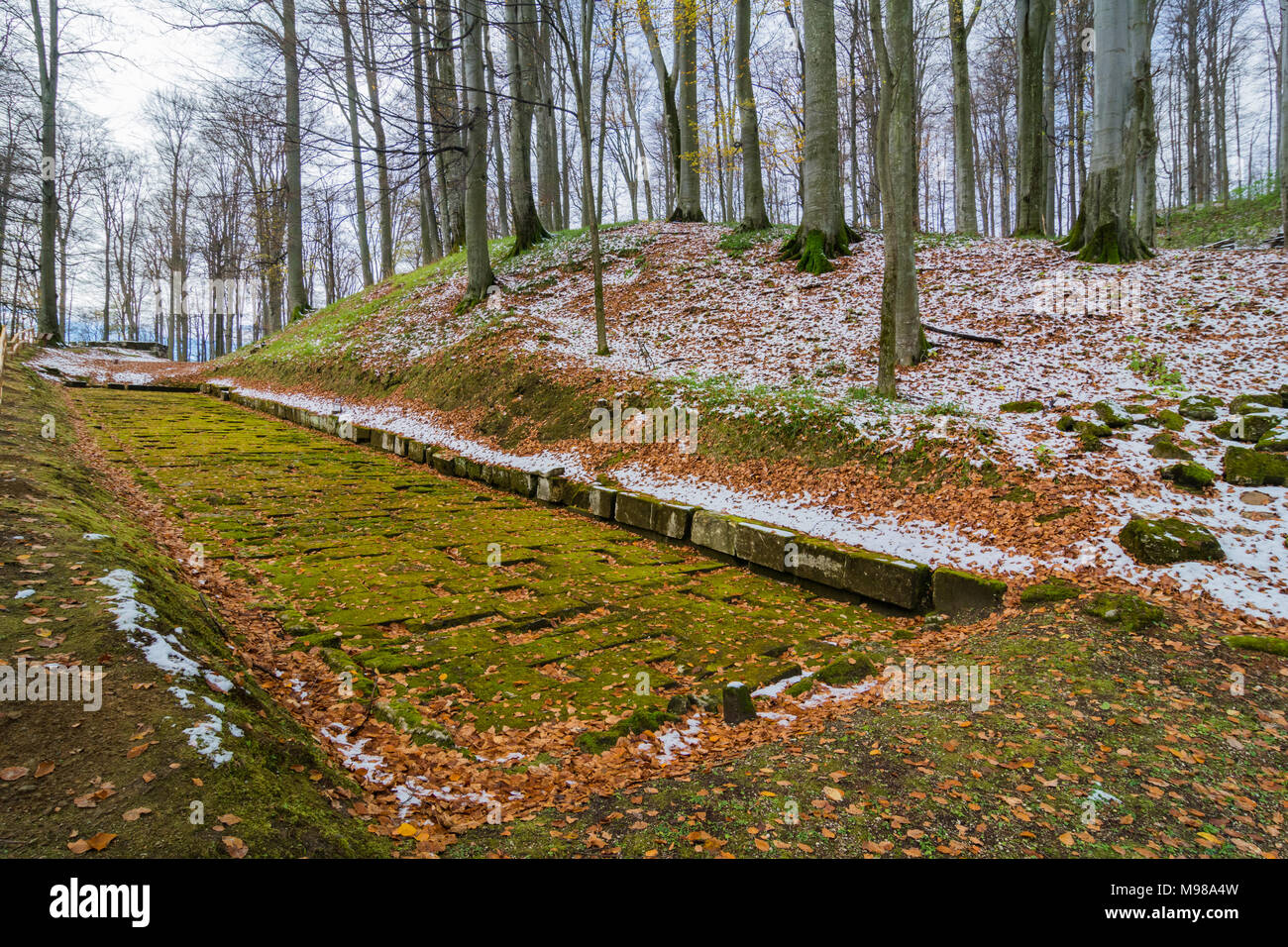Paved ancient dacian road in Sarmizegetusa, capital of the Dacian Empire, UNESCO World Heritage Site Stock Photo