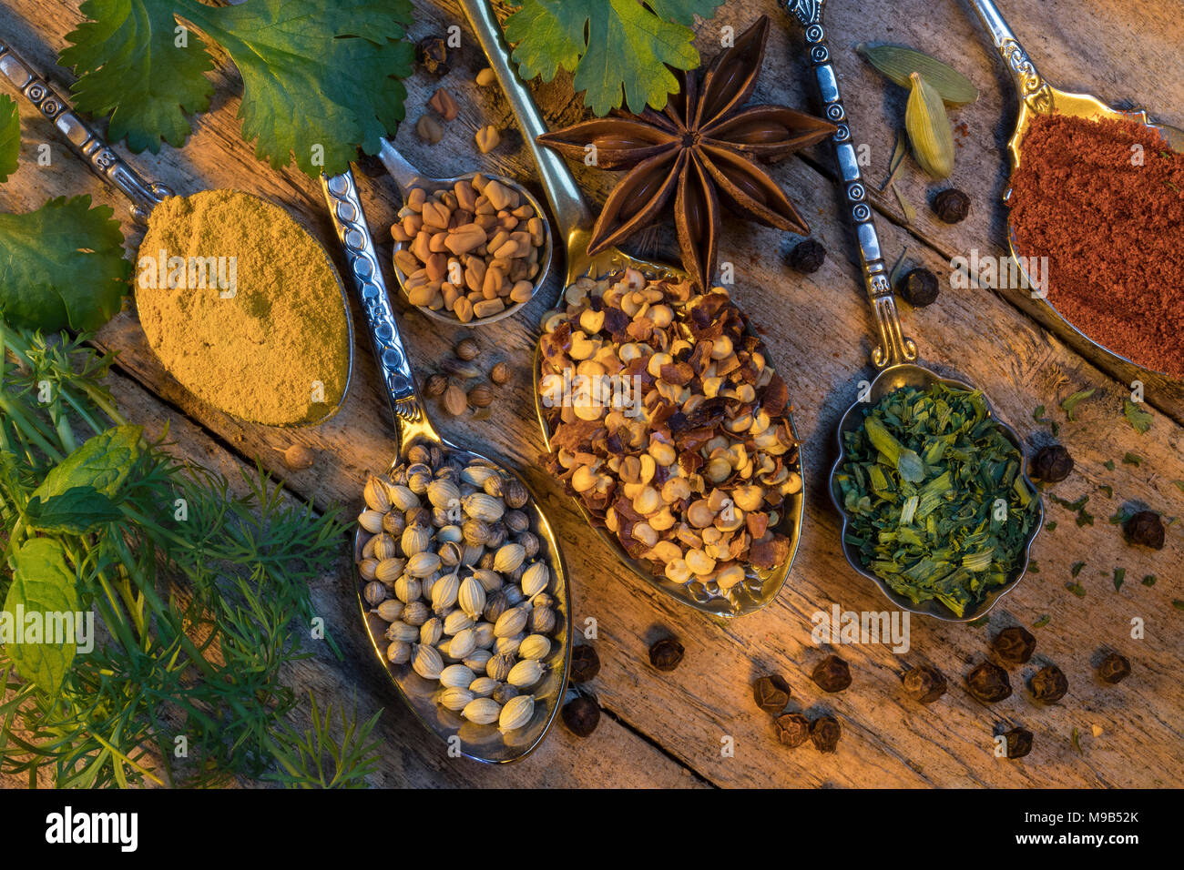Selection of herbs and spices used to add flavor to cooking. - Stock Image