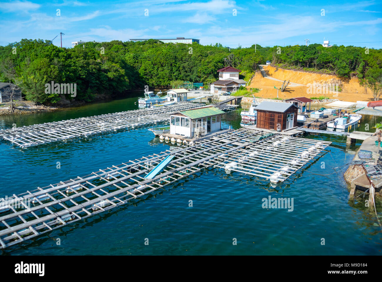 Pearl cultivation, Ago Bay, Shima City, Mie Prefecture,Japan Stock Photo