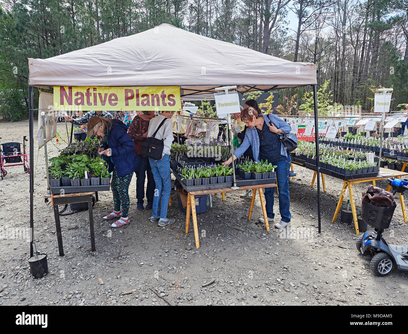 People shop for garden plants and flowers at the Spring plant and flower sale in Callaway Gardens, Pine Mountain GA, USA. - Stock Image