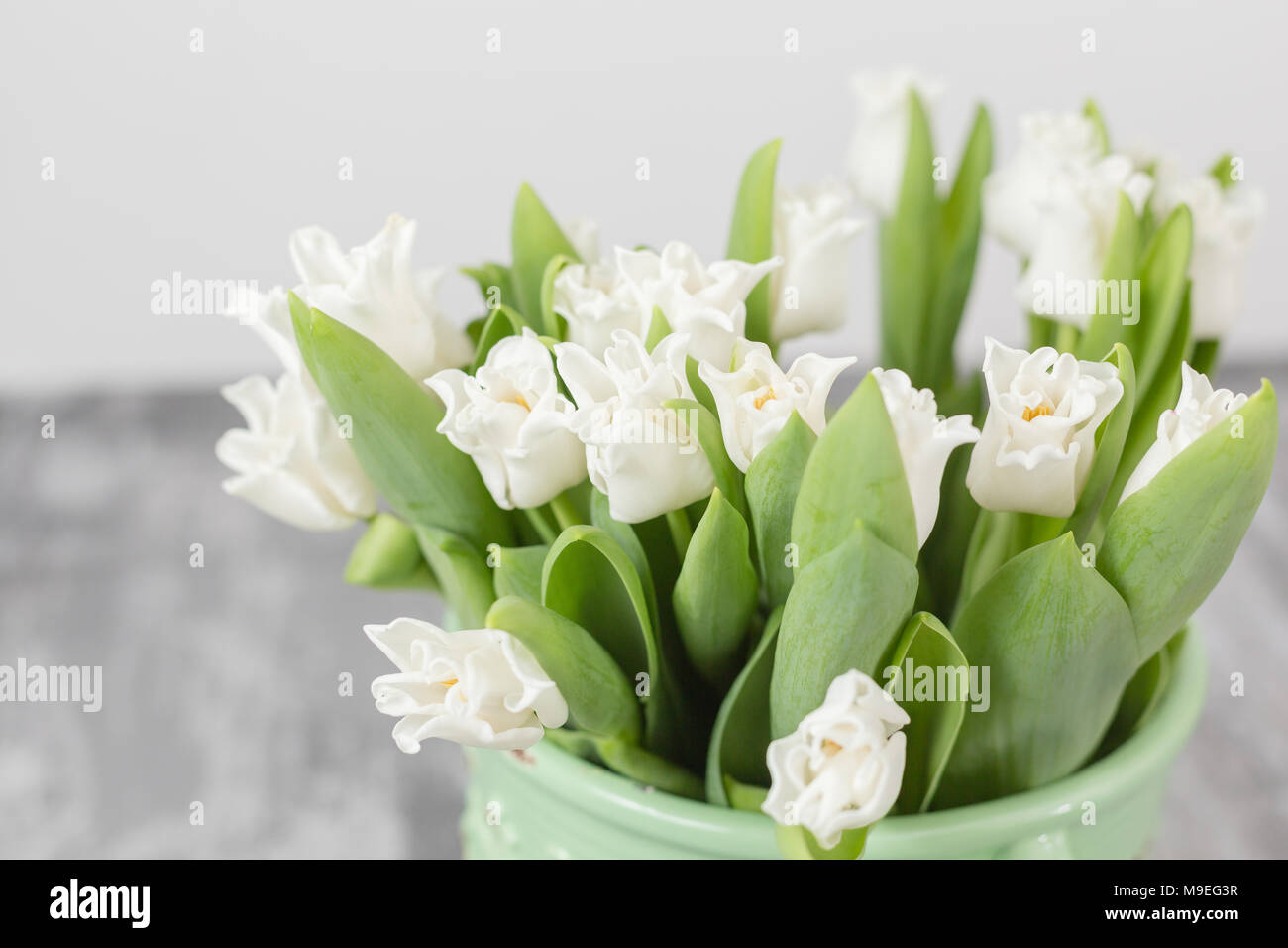 Tulips Of White Color In Green Vase Floral Natural Backdrop