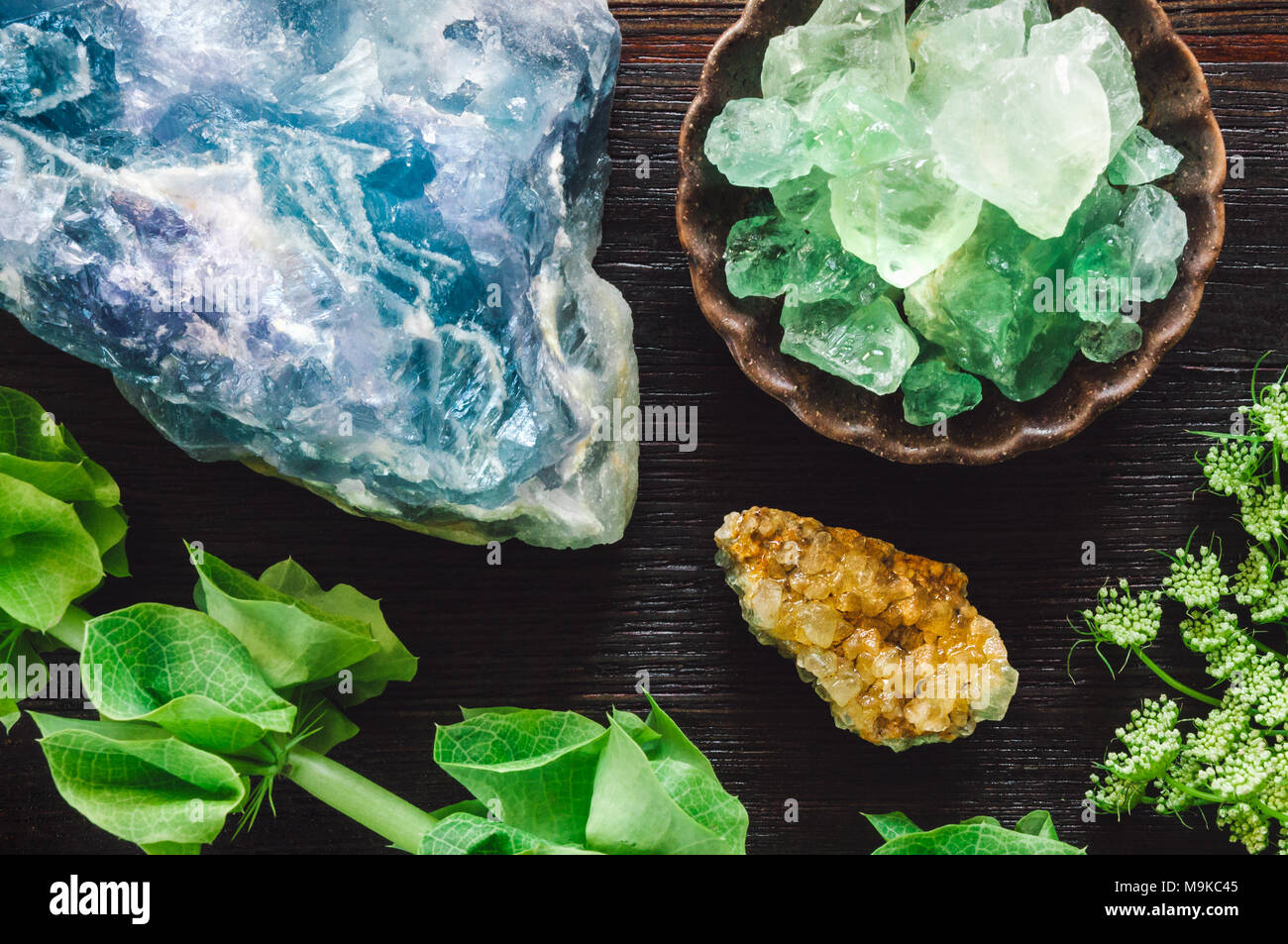 A Variety of Flourite with Assorted Botanicals - Stock Image