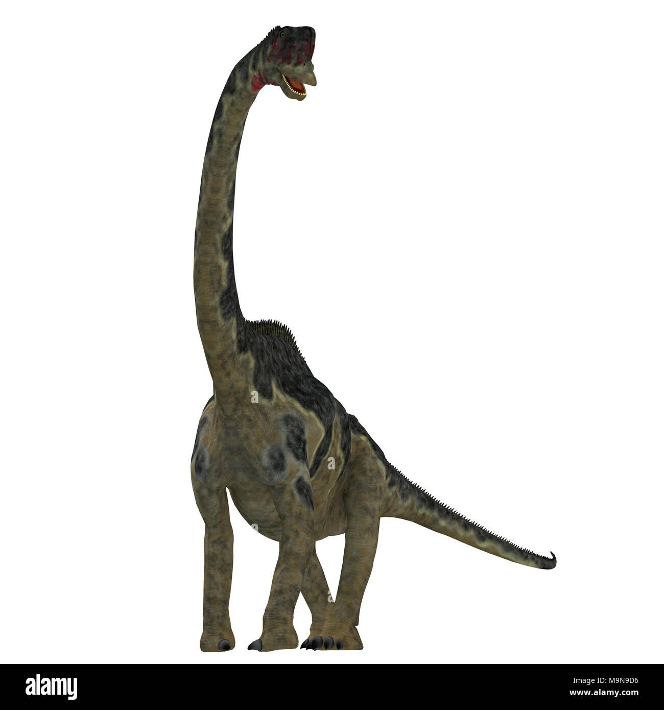 Europasaurus Dinosaur on White - Europasaurus was a sauropod herbivorous dinosaur that lived in Germany, Europe during the Jurassic Period. - Stock Image