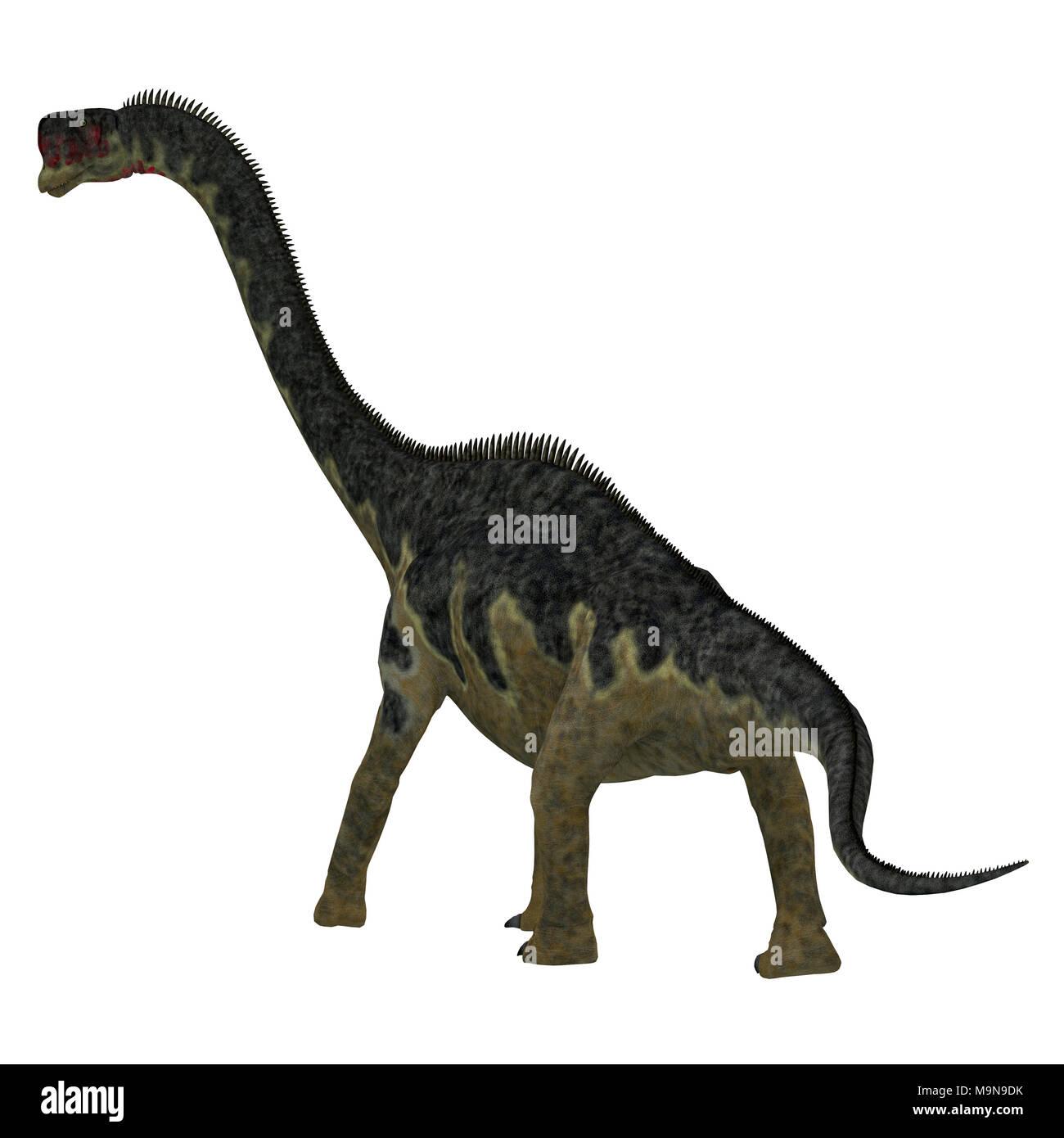 Europasaurus Dinosaur Tail - Europasaurus was a sauropod herbivorous dinosaur that lived in Germany, Europe during the Jurassic Period. - Stock Image