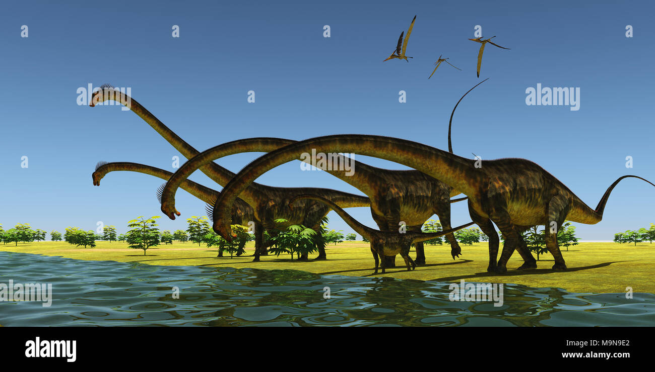 Jurassic Barosaurus Dinosaurs - A herd of Barosaurus dinosaurs bend their long necks to drink from a river as a flock of Pteranodons fly over. - Stock Image