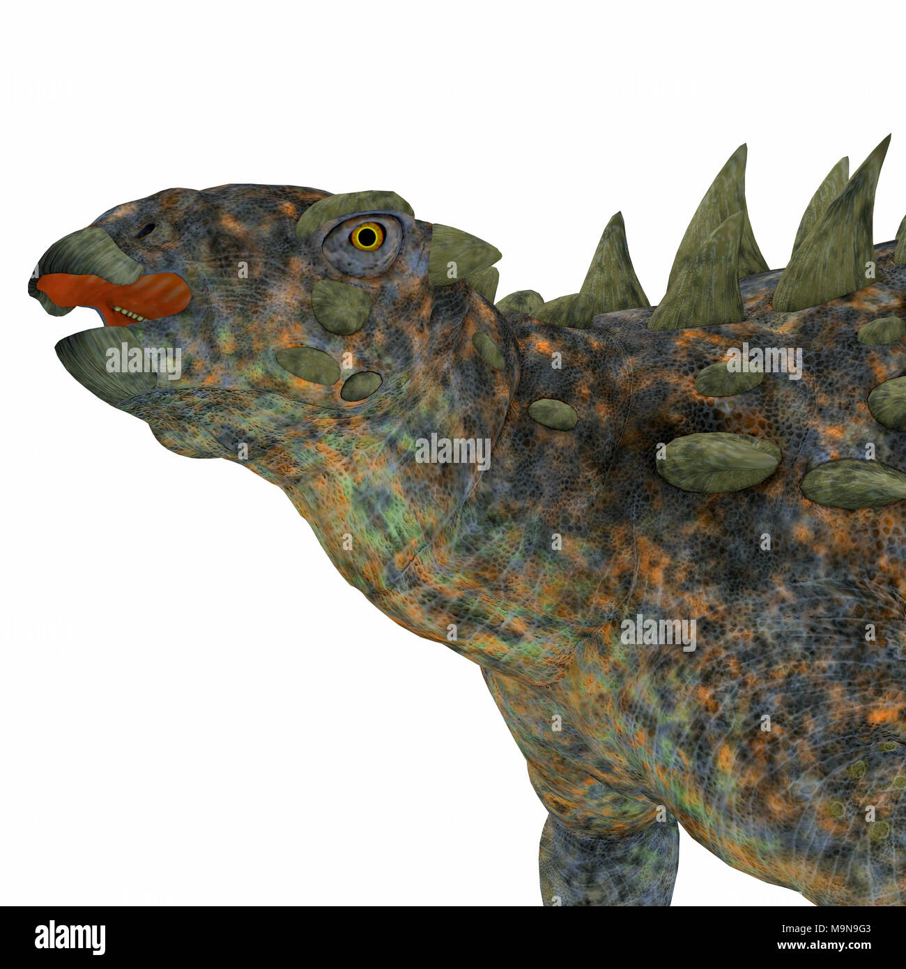 Polacanthus Dinosaur Head - Polacanthus was an armored herbivorous dinosaur that lived in Europe during the Cretaceous Period. - Stock Image