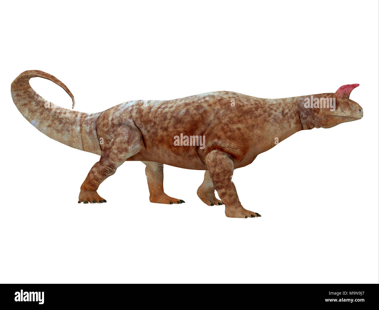Shringasaurus Dinosaur Side Profile - Shringasaurus was a herbivorous sauropod dinosaur that lived in India in the Triassic Period. - Stock Image