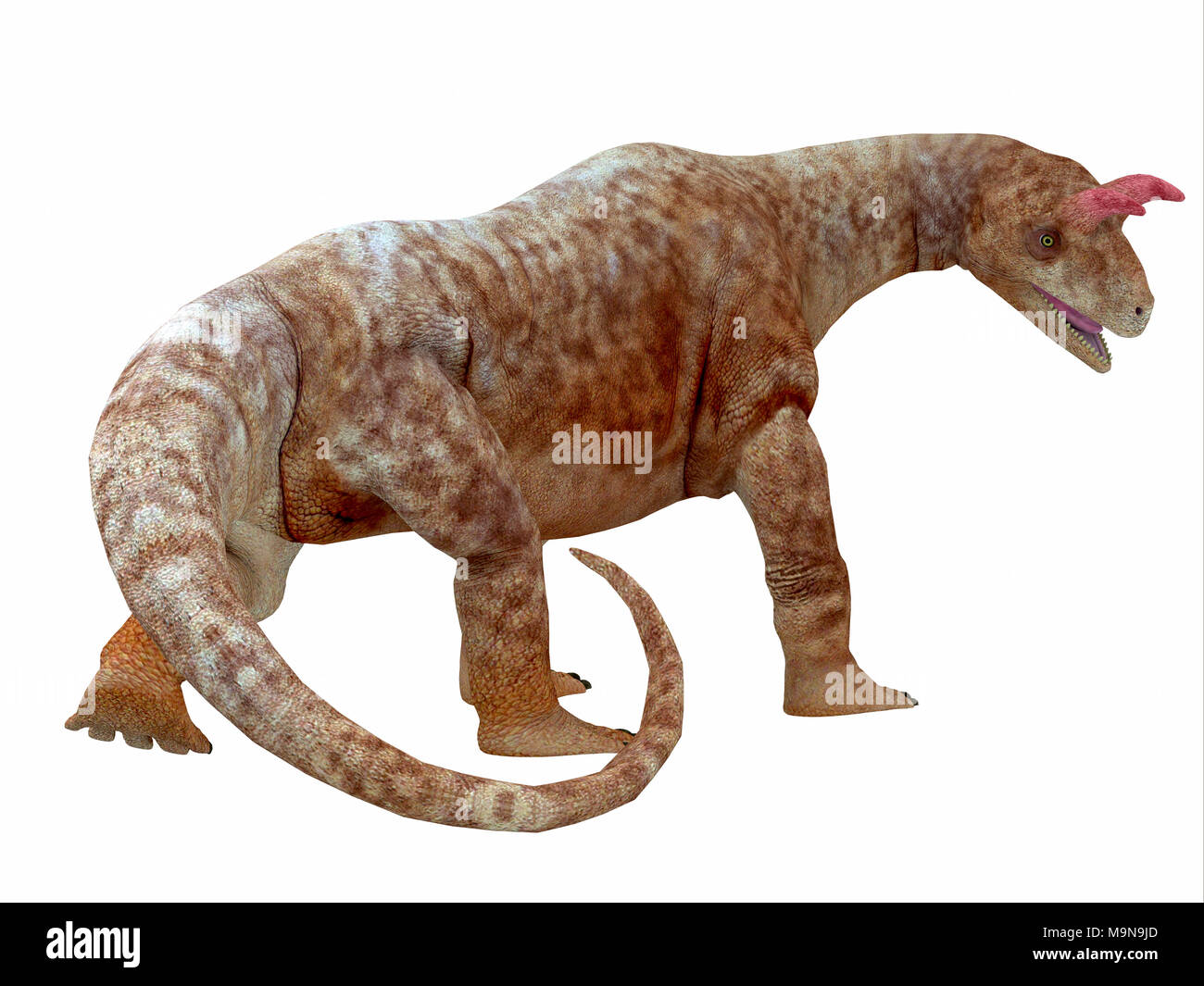 Shringasaurus Dinosaur Tail - Shringasaurus was a herbivorous sauropod dinosaur that lived in India in the Triassic Period. - Stock Image