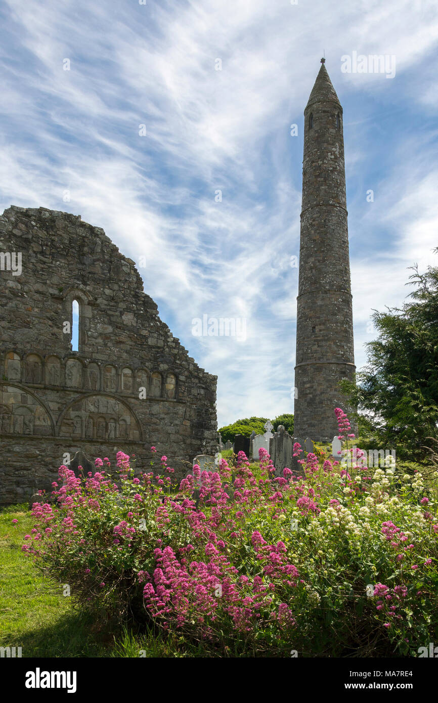 The ruins of Ardmore Cathedral and round tower, County Waterford in the Republic of Ireland. - Stock Image