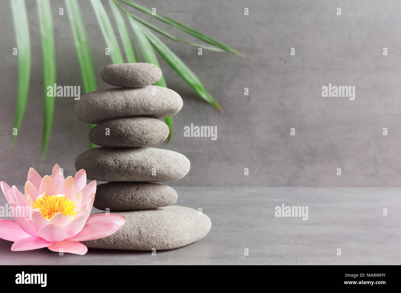 Stones pink flower lotus and green palm leaf balance zen and spa stones pink flower lotus and green palm leaf balance zen and spa concept izmirmasajfo