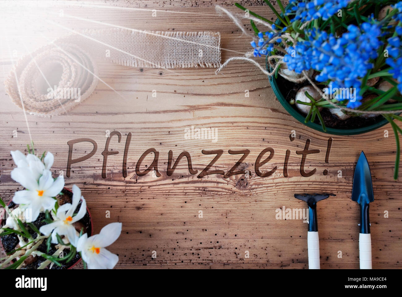 German Text Pflanzzeit Means Planting Season Sunny Spring Flowers