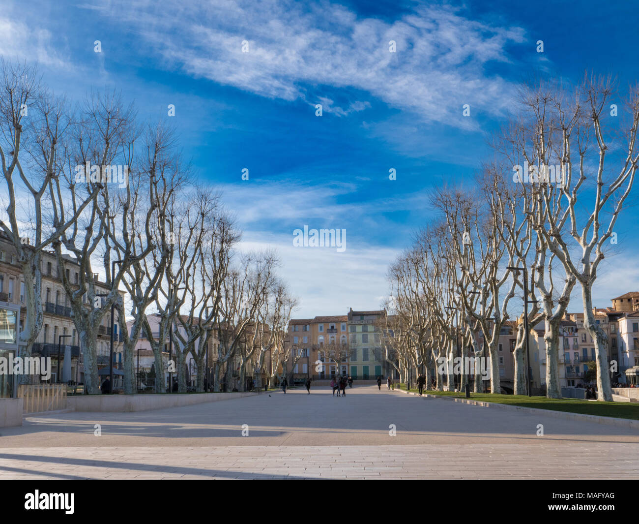 Cours Mirabeau promenade in the center of Narbonne on a sunny winter day - Stock Image