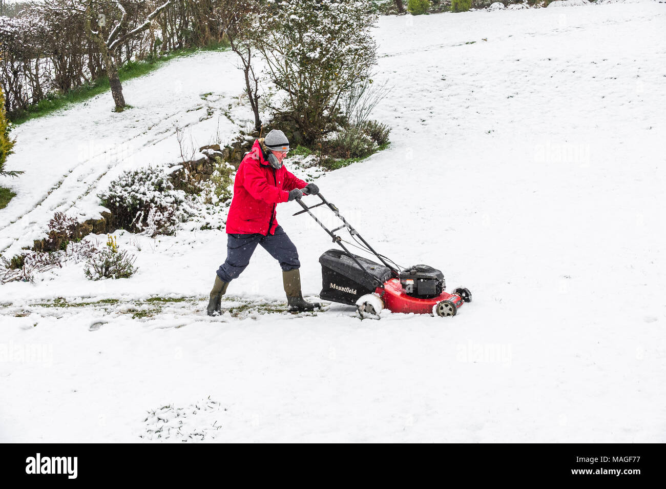 Mansfield, England. 2nd Apr, 2018. UK Weather: 2nd. April 2018.  Its Spring and the grass needs cutting. Over night snow covers large parts of the East Midlands as it moves north followed by rain. Credit: Alan Keith Beastall/Alamy Live News - Stock Image