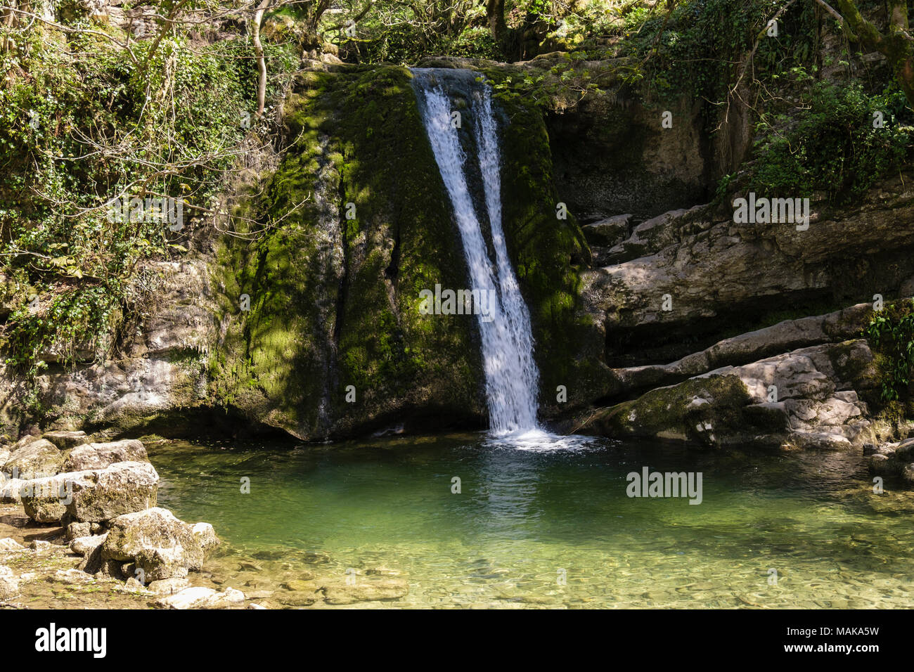 Janet's Foss waterfall falls over a limestone ledge into a pool on Gordale Beck in summer. Malham Yorkshire Dales National Park England UKStock Photo