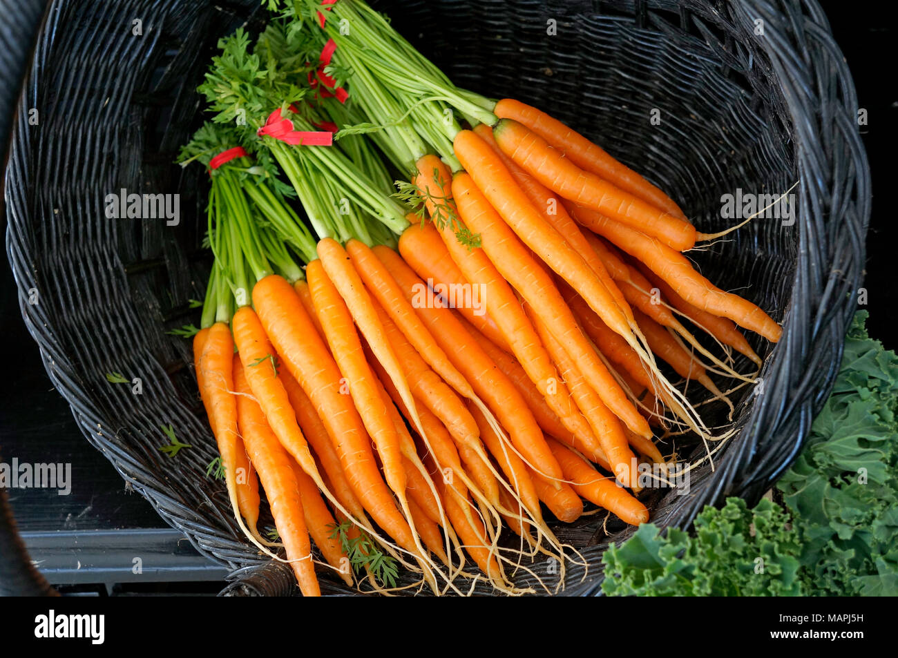 basket-full-of-bunches-of-fresh-carrots-
