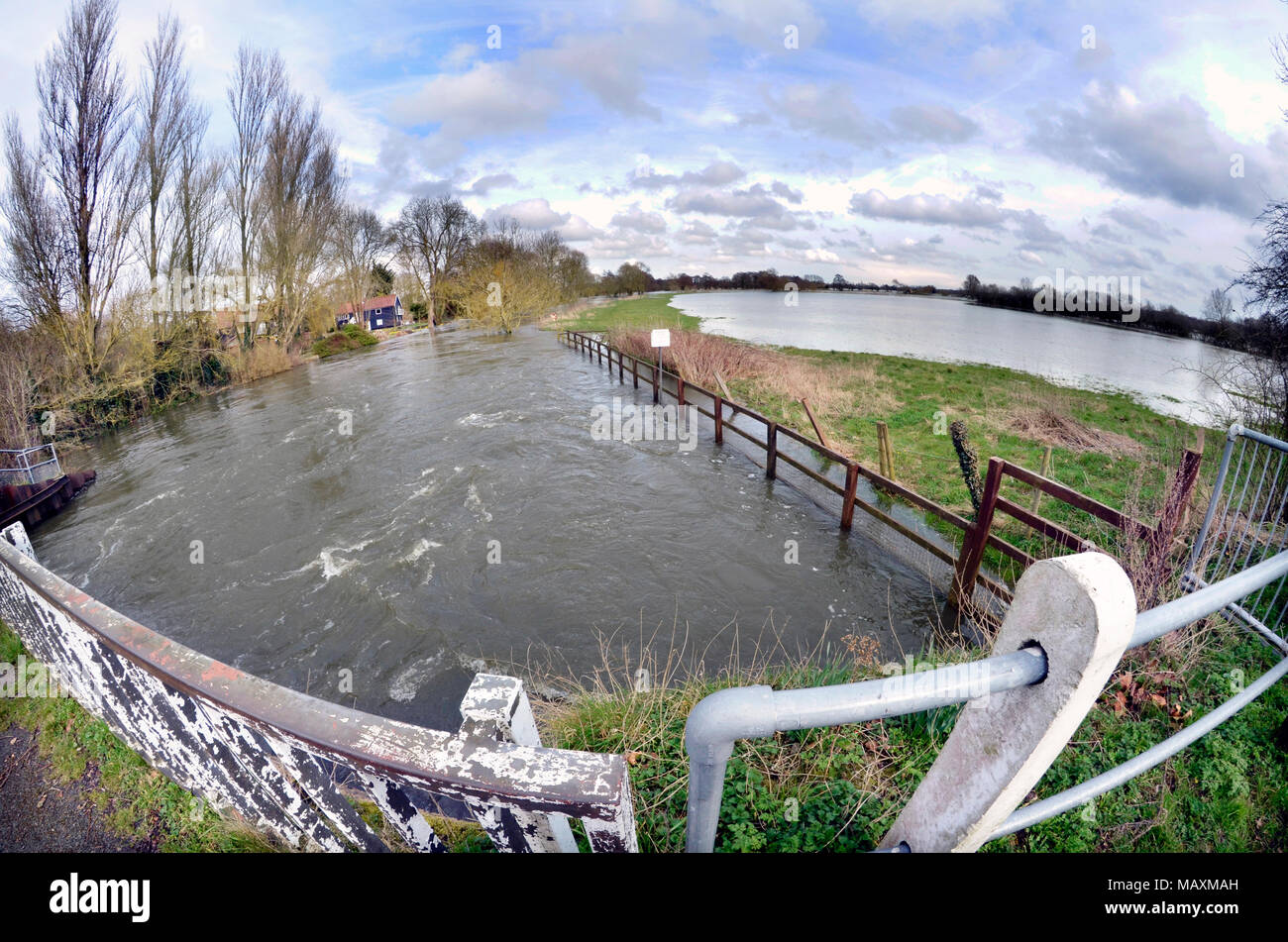 flooded marshes and overflowing river waveney at ellingham norfolk suffolk border uk - Stock Image