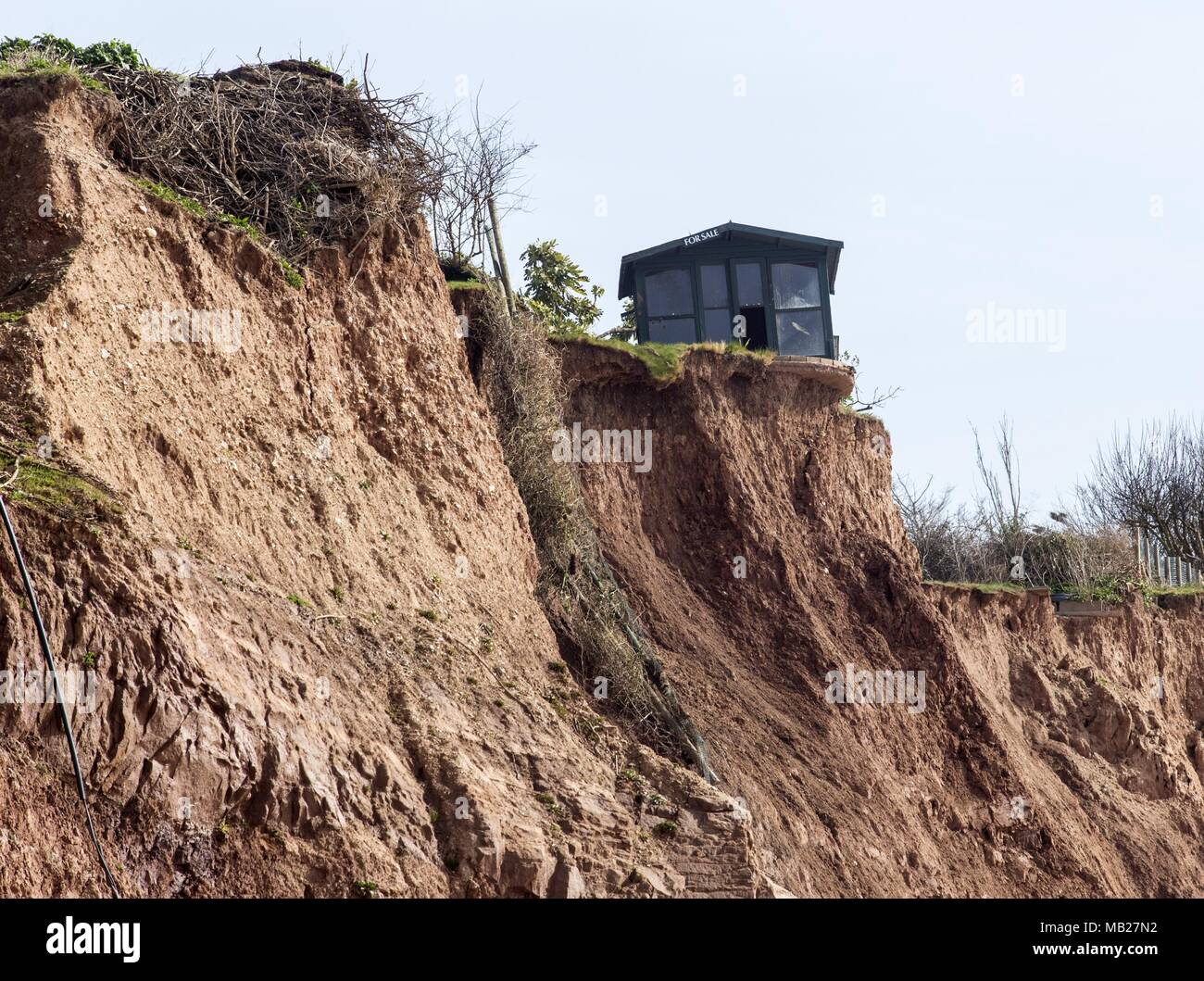"""Sidmouth, 6th Apr 18. A Devon resident has amusingly put a """"For Sale"""" notice on his shed – as it is now perched inches from a 100 foot drop. Four cliff falls in the last week have left properties in Cliff Road, Sidmouth missing metres of garden. The continuing erosion of Pennington Point, to the east of the Regency town, now endanger the mouth of the River Sid itself, which if affected could flood a large area ofthe town. Repair costs are estimated at cost £72 millionif the flooding happened. Photo Central / Alamy Live News Stock Photo"""