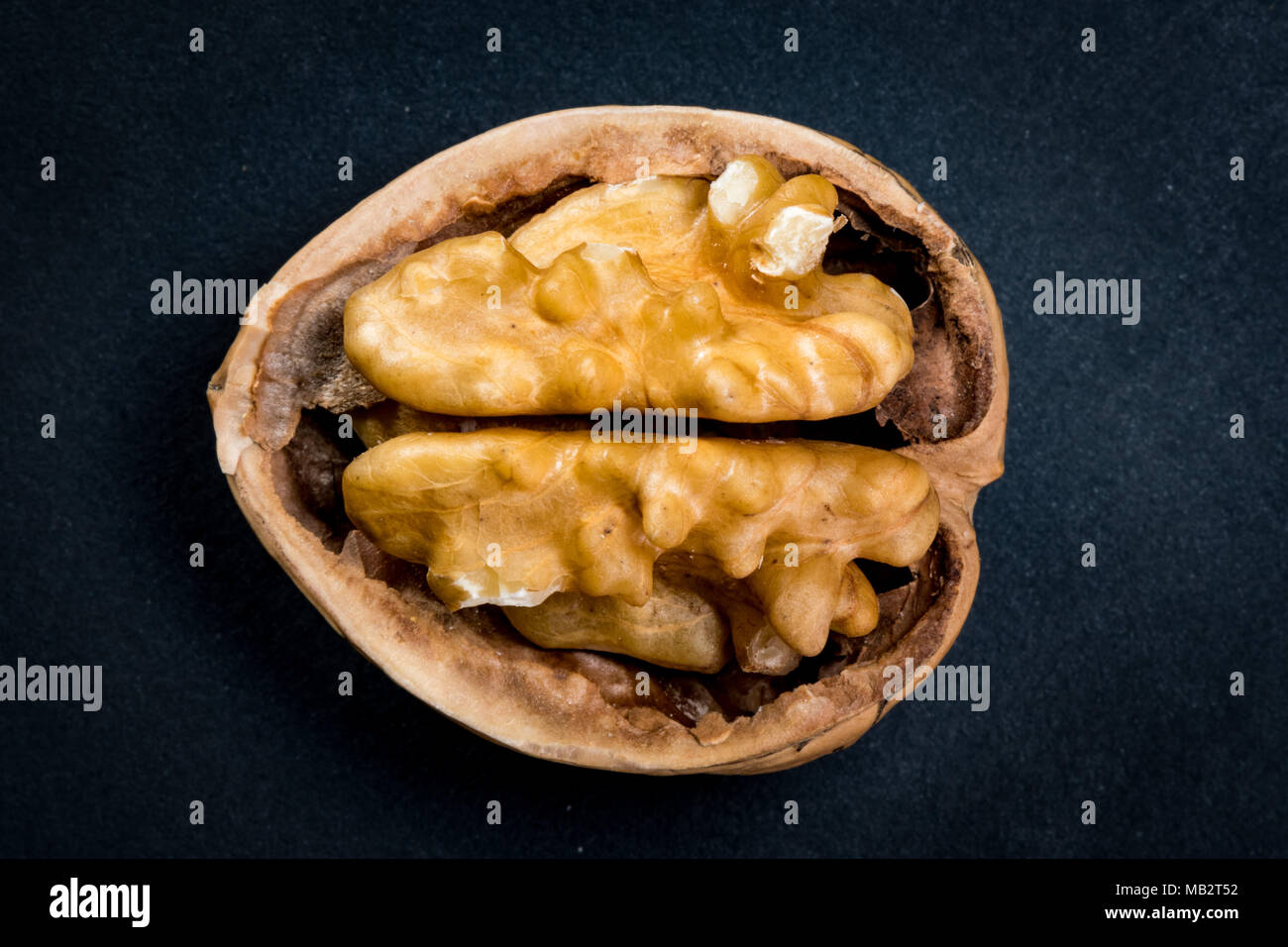 Walnut and Half Shell highlighted against dark background - Stock Image