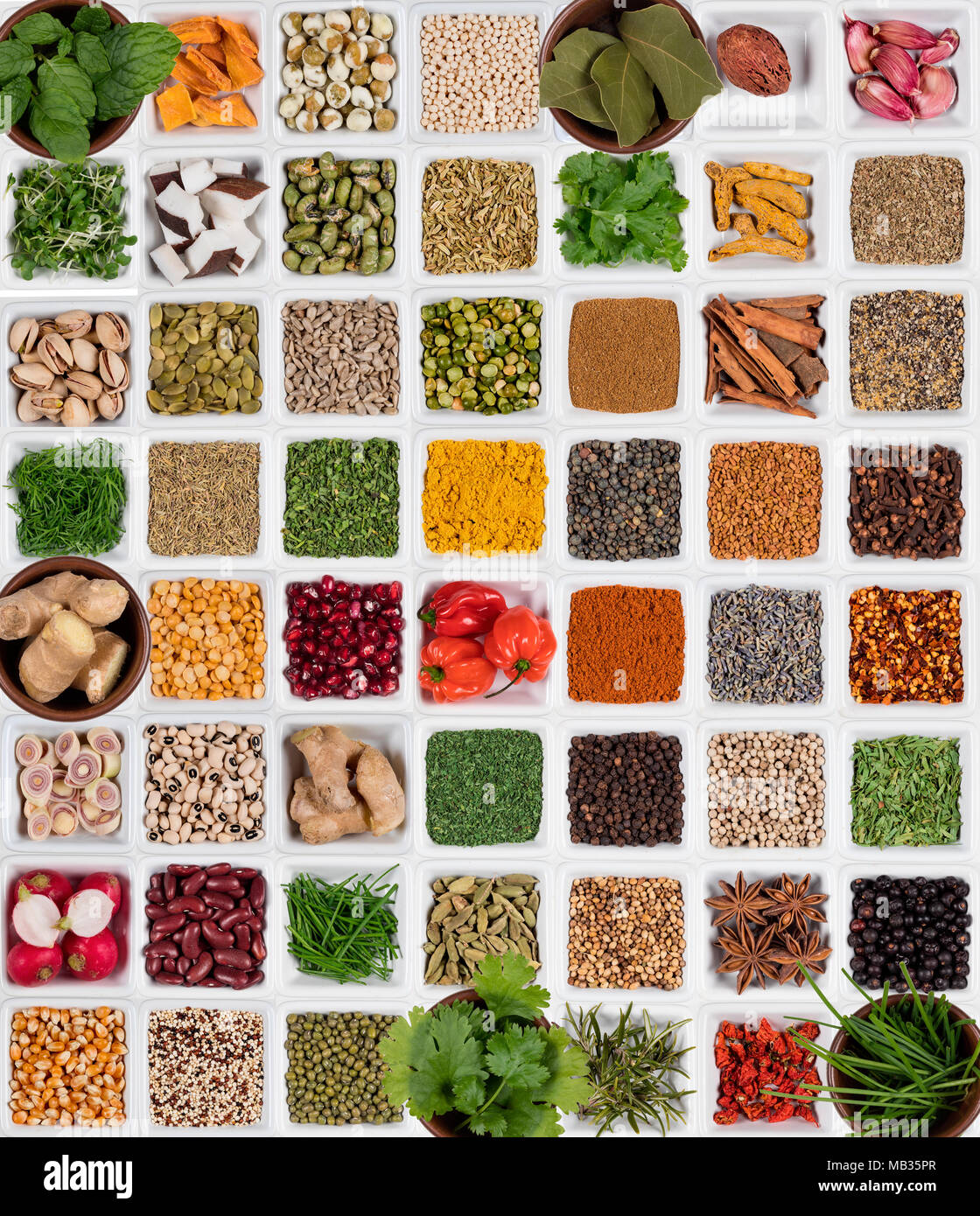 Selection of Herbs and Spices used to add flavor and seasoning to cooking. - Stock Image