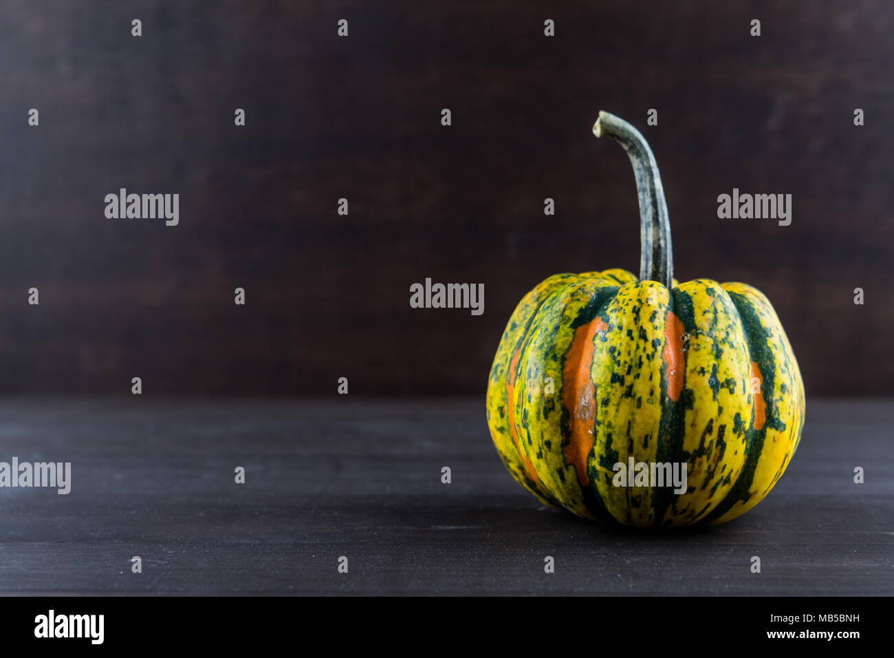Acorn Squash on Dark Background with Copy Space to left - Stock Image