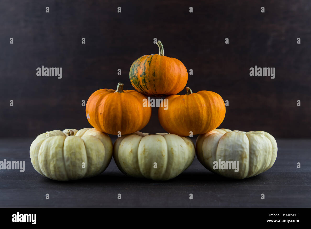 Baby Boo and Jack Be Little Pumpkins in Stack on dark background - Stock Image