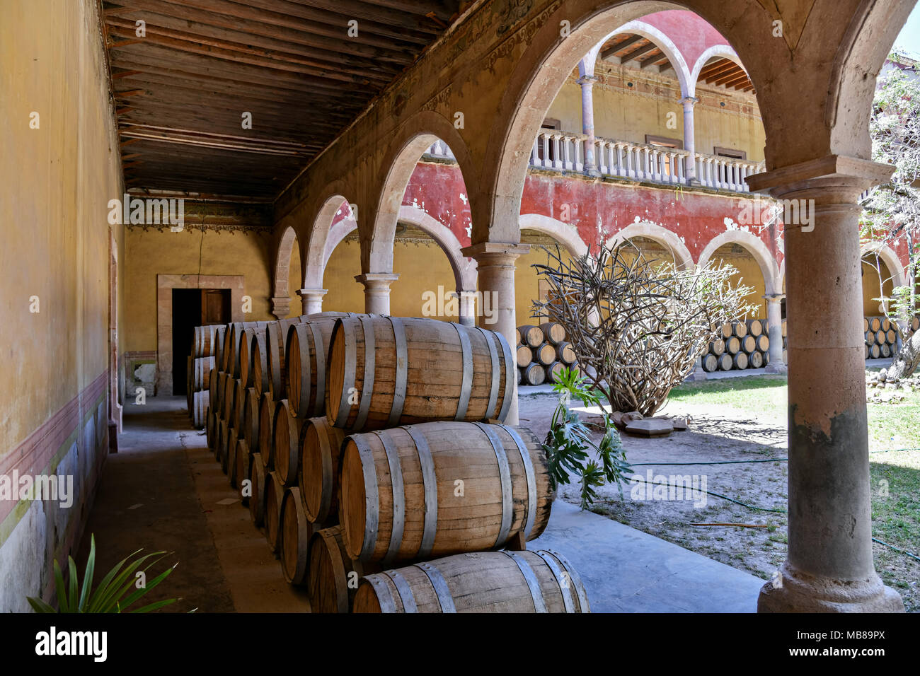 Oak barrels filled with Mezcal age under the derelict arches of the Hacienda de Jaral de Berrio in Jaral de Berrios, Guanajuato, Mexico. The abandoned Jaral de Berrio hacienda was once the largest in Mexico and housed over 6,000 people on the property and is credited with creating Mescal. - Stock Image