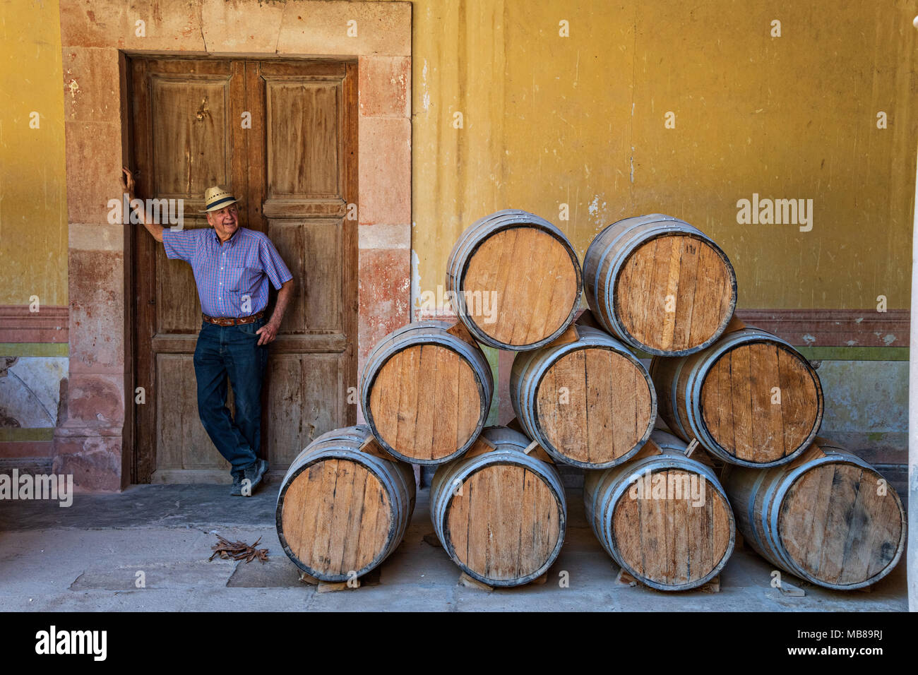 A worker rests by the oak barrels filled with Mezcal as they age under the derelict arches of the Hacienda de Jaral de Berrio in Jaral de Berrios, Guanajuato, Mexico. The abandoned Jaral de Berrio hacienda was once the largest in Mexico and housed over 6,000 people on the property and is credited with creating Mescal. - Stock Image