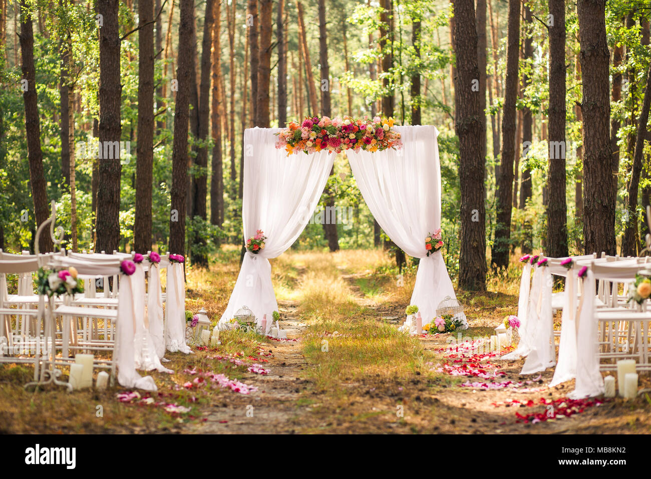 Beautiful Elegant Wedding Decorations Of Place For Ceremony Outside In Old Wood With Huge Pines Trees Horizontal Color Picture