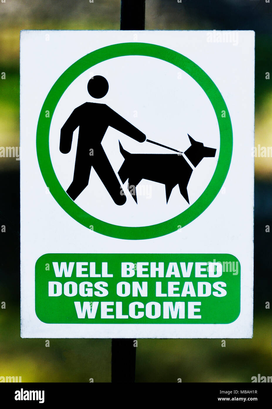 notice-well-behaved-dogs-on-leads-welcome-k-village-kendal-cumbria-england-united-kingdom-europe-MBAH1R.jpg